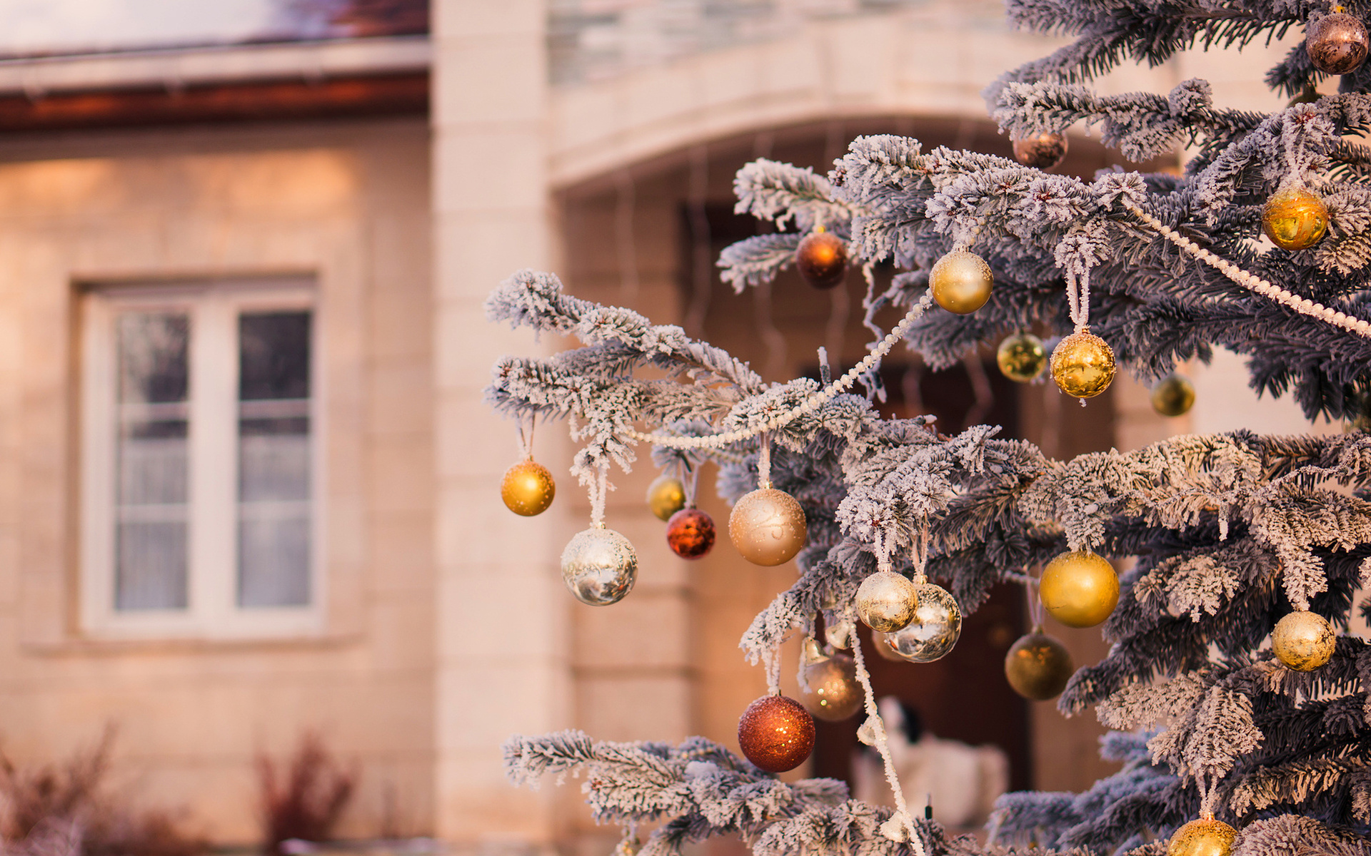 Картинки новогоднее настроение и украшение