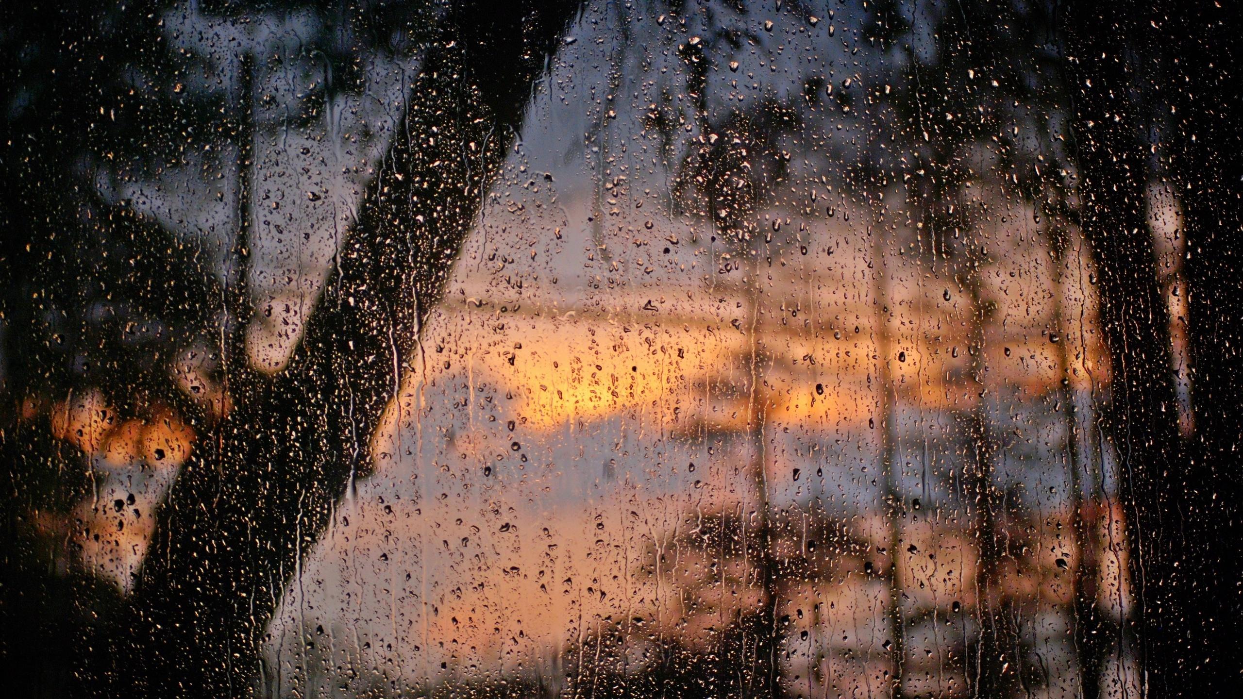 кусни зилени дожд
