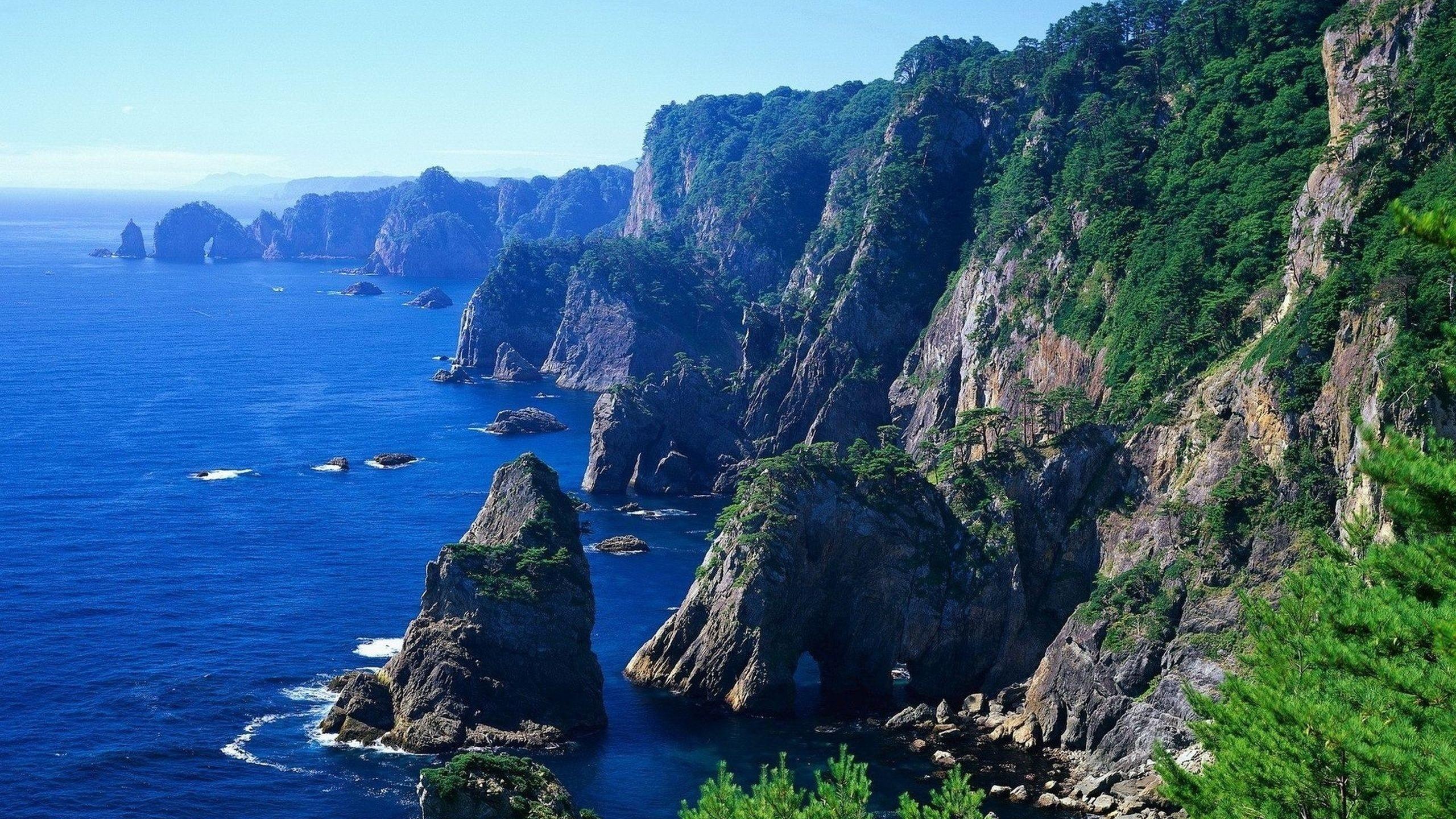 картинка горы лес океан