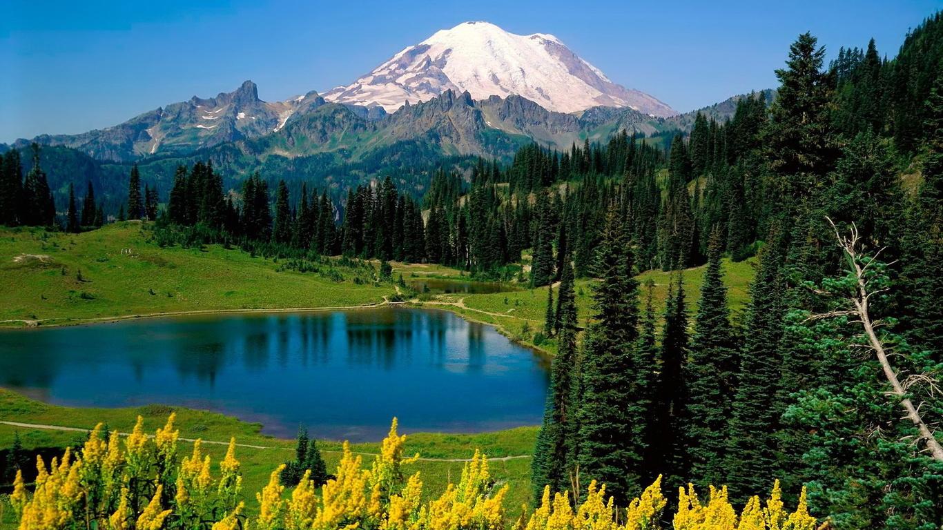 Слайды с красивыми картинками природы