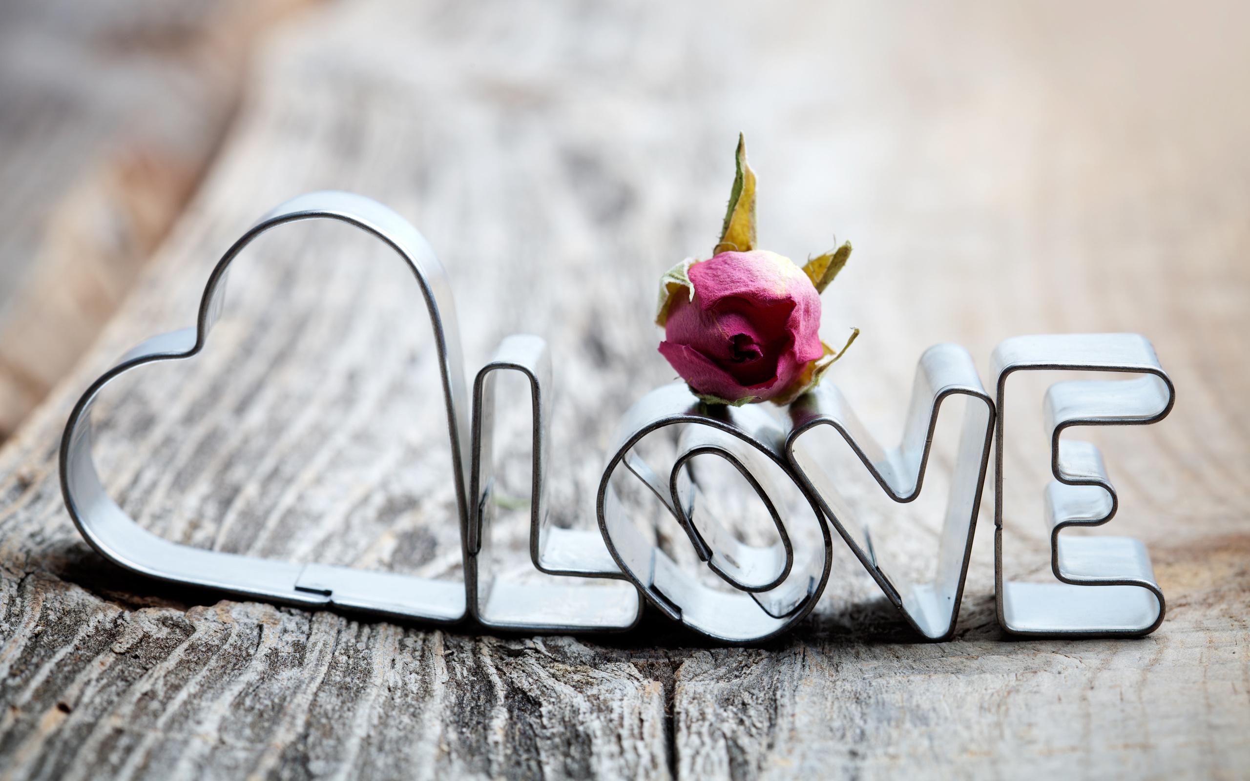 Самые новые красивые картинки любовь