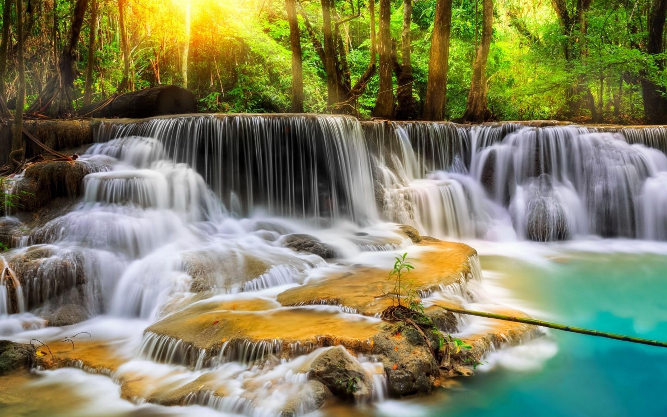 Красивые картинки природы скопировать