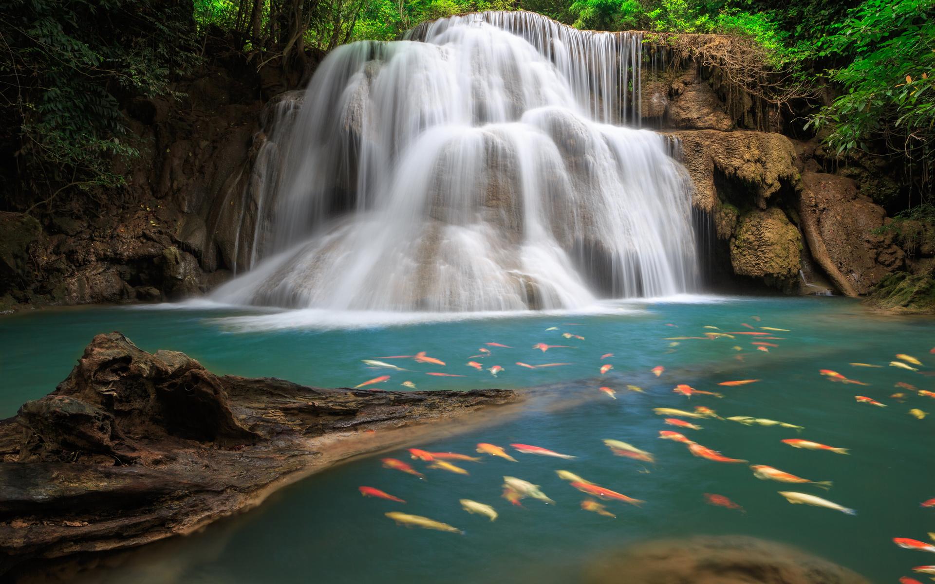 кухни вода море водопад картинки на телефон днём