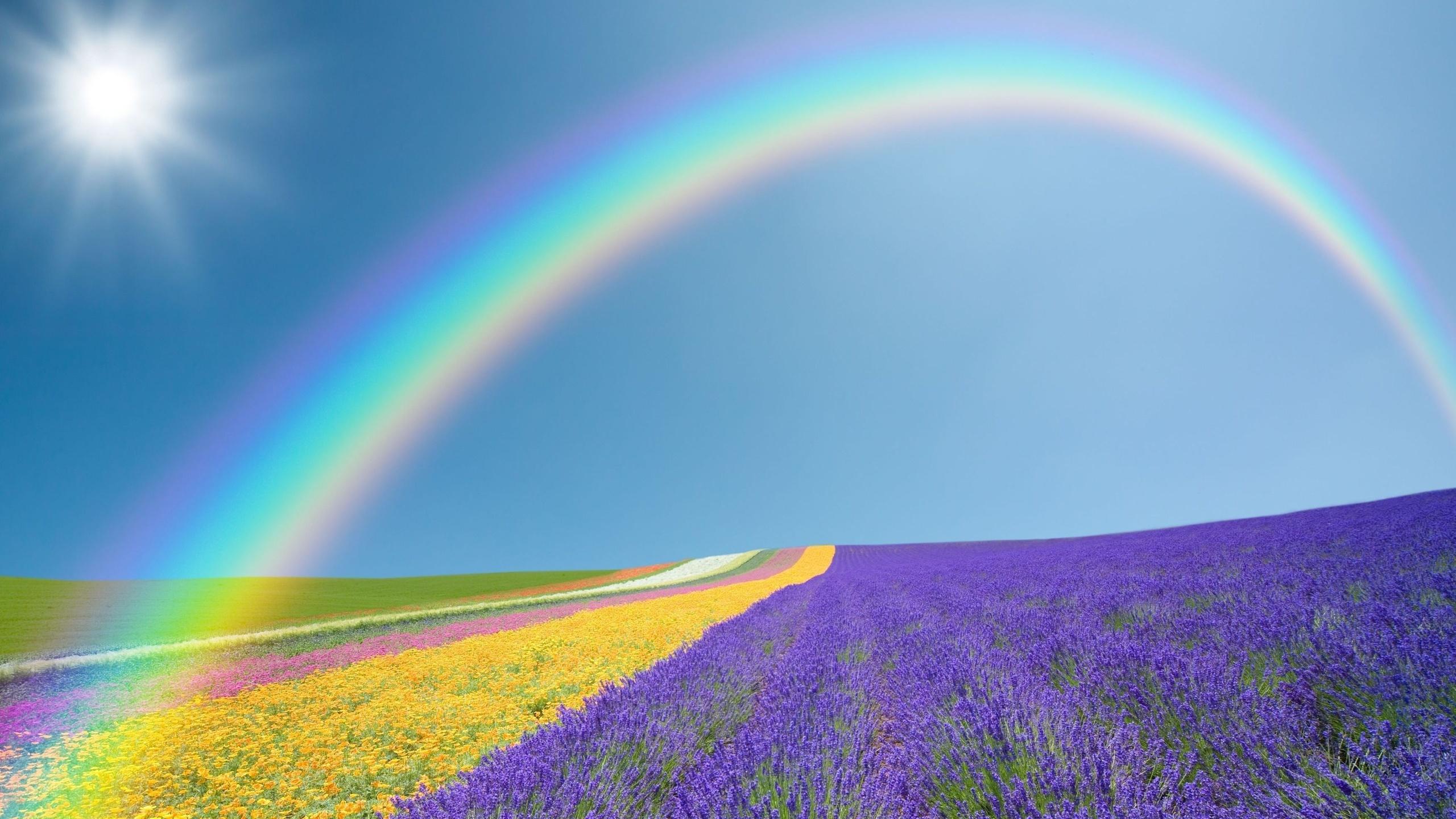 Красивые открытки радуги