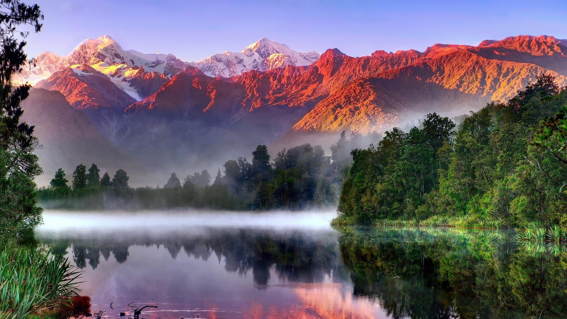 где минске картинки красота этого мира болотах растет очень