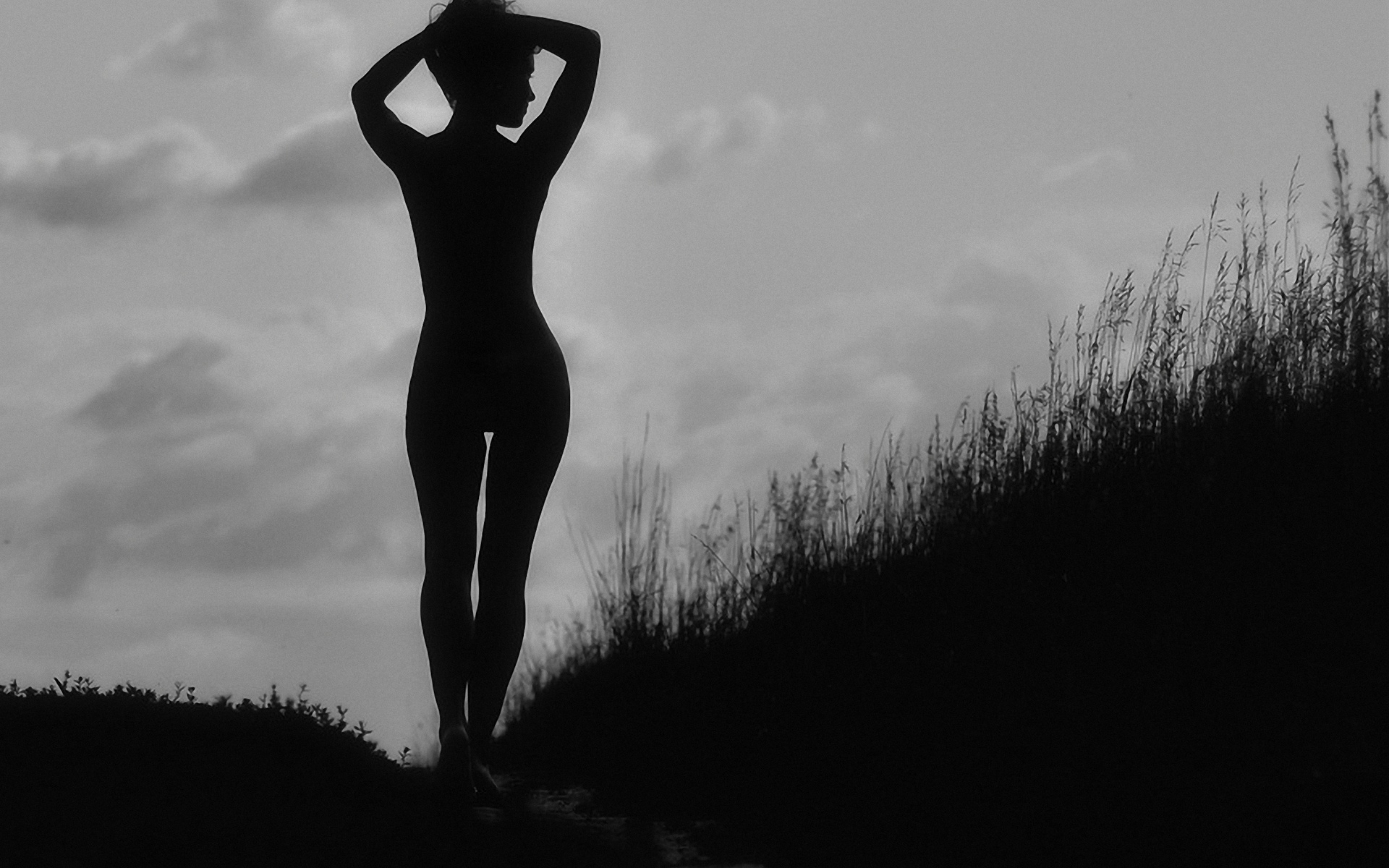 Женские силуэты в темноте картинки