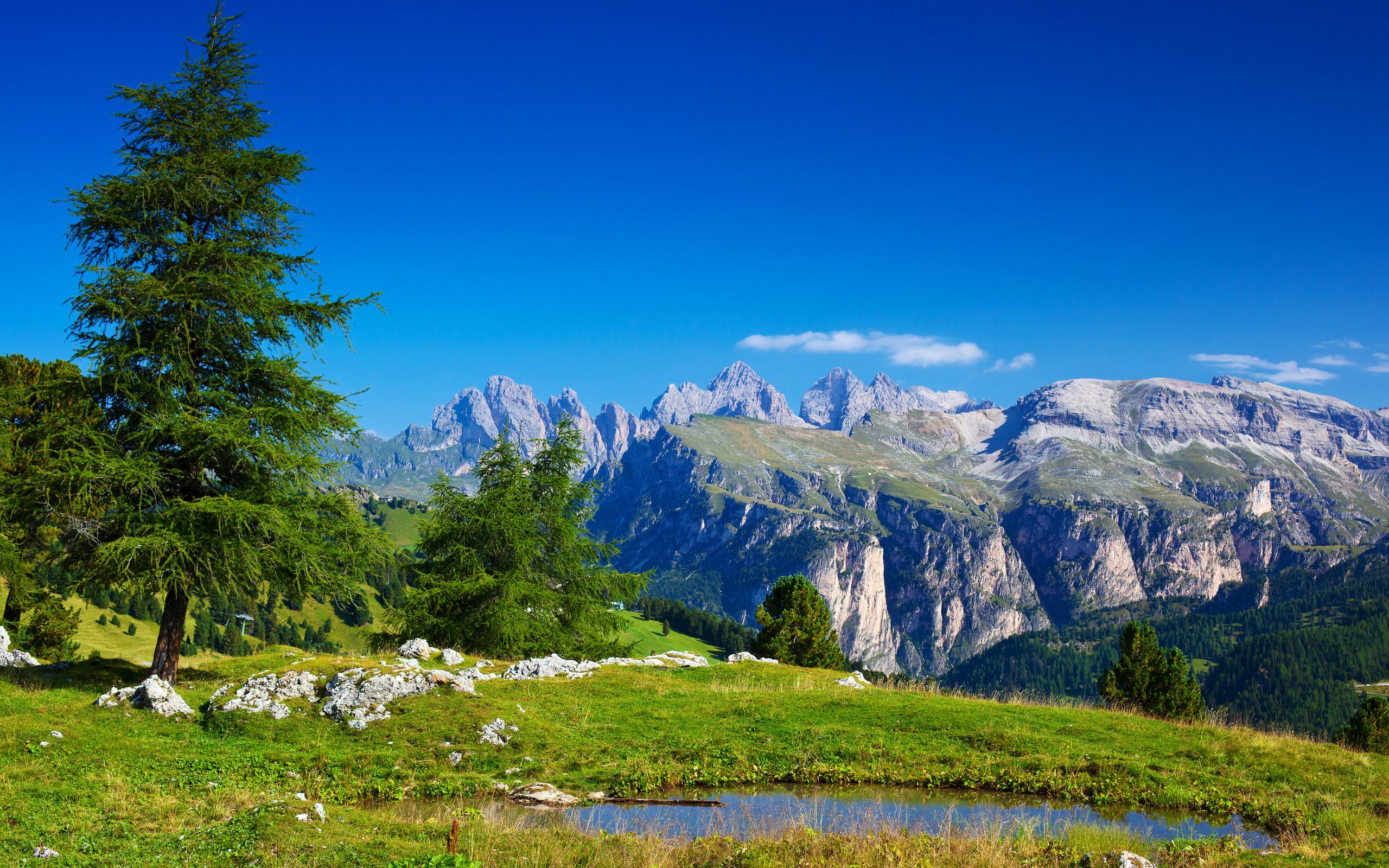 Открытки альпы, открытка днем