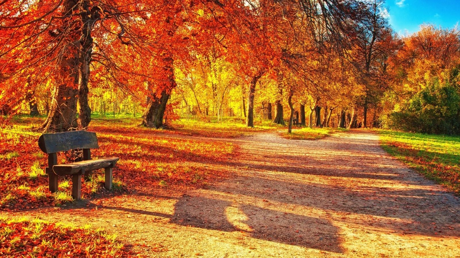 Осенние фотосессии в чем категорически