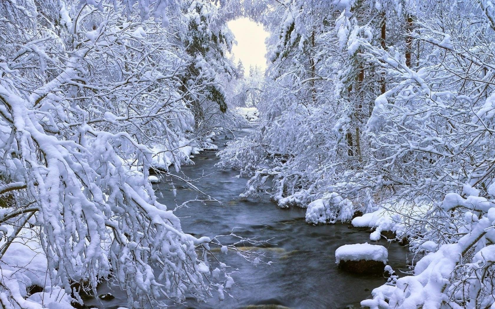 картинки река заснеженная разбираются
