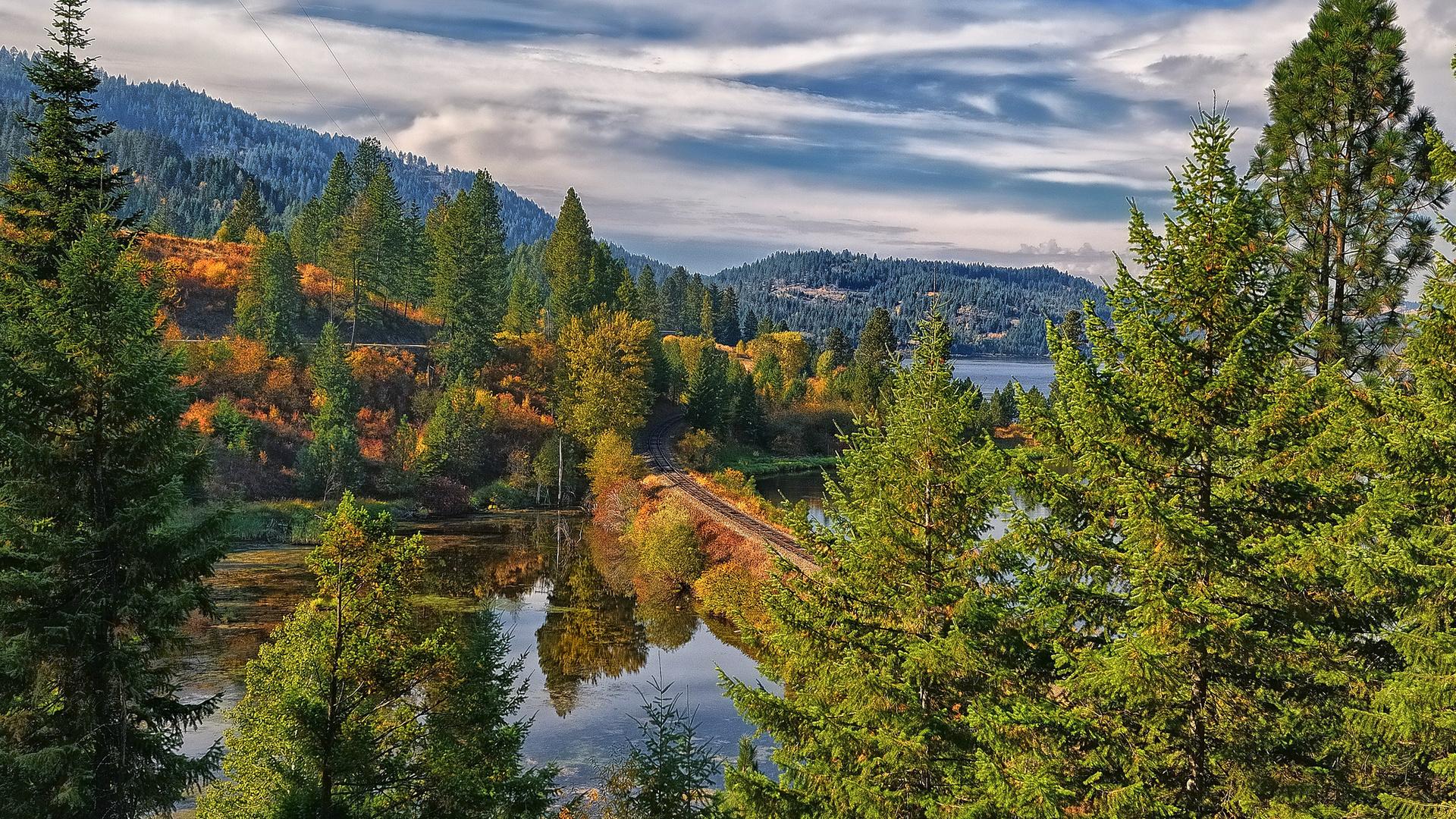 Картинки тайга леса реки и горы
