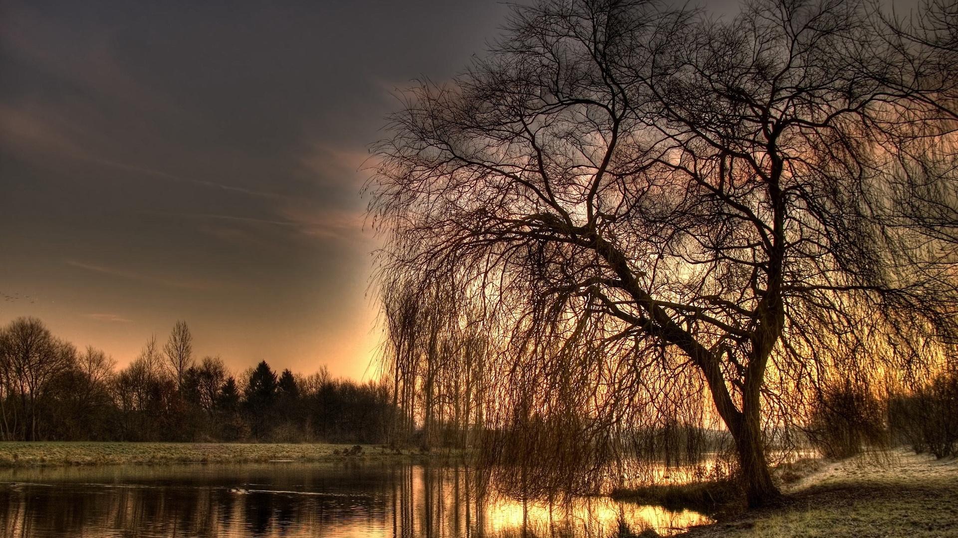 Картинки природа вечер