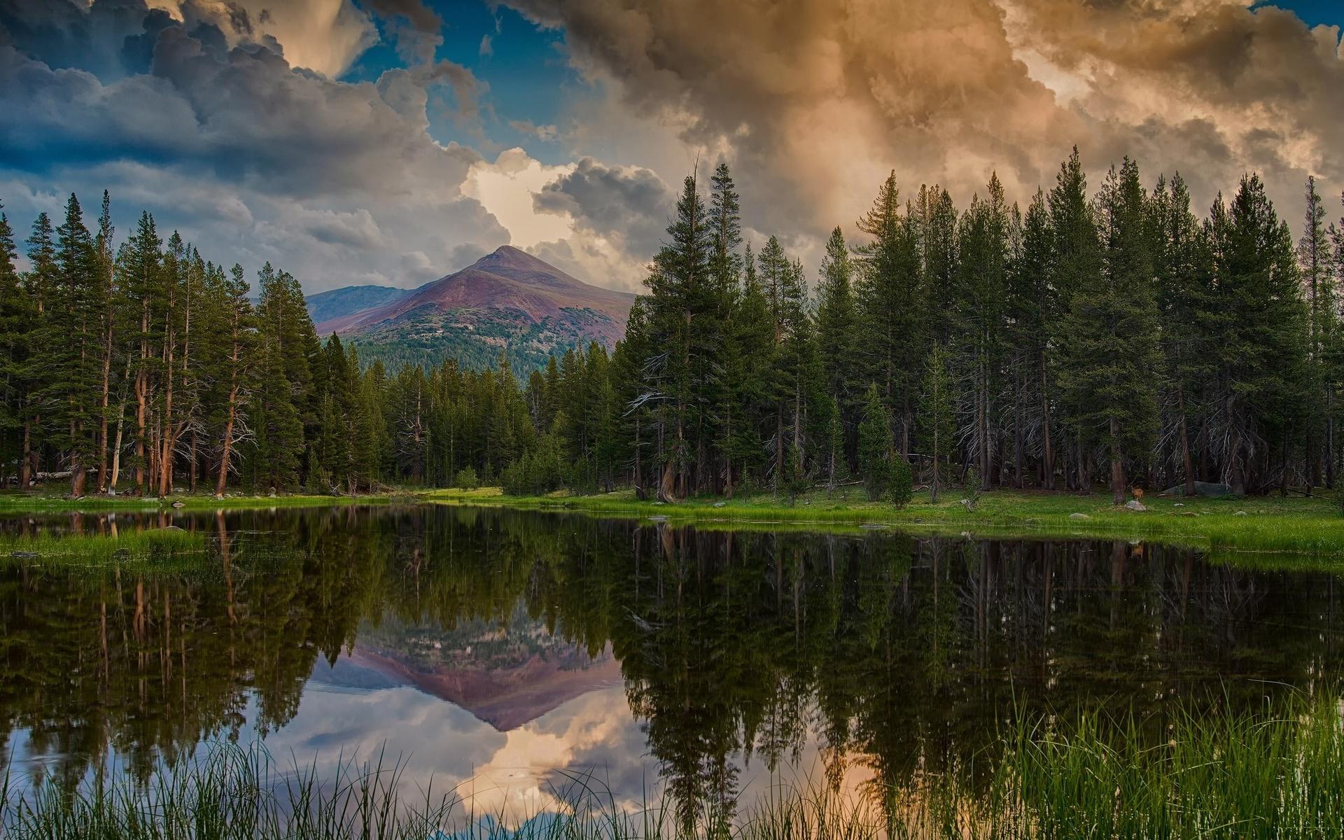 выдающийся красивые картинки озеро лес узнать