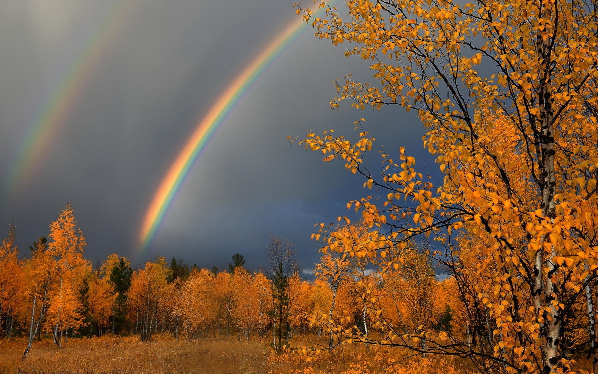 учится самые красивые картинки погоды первые