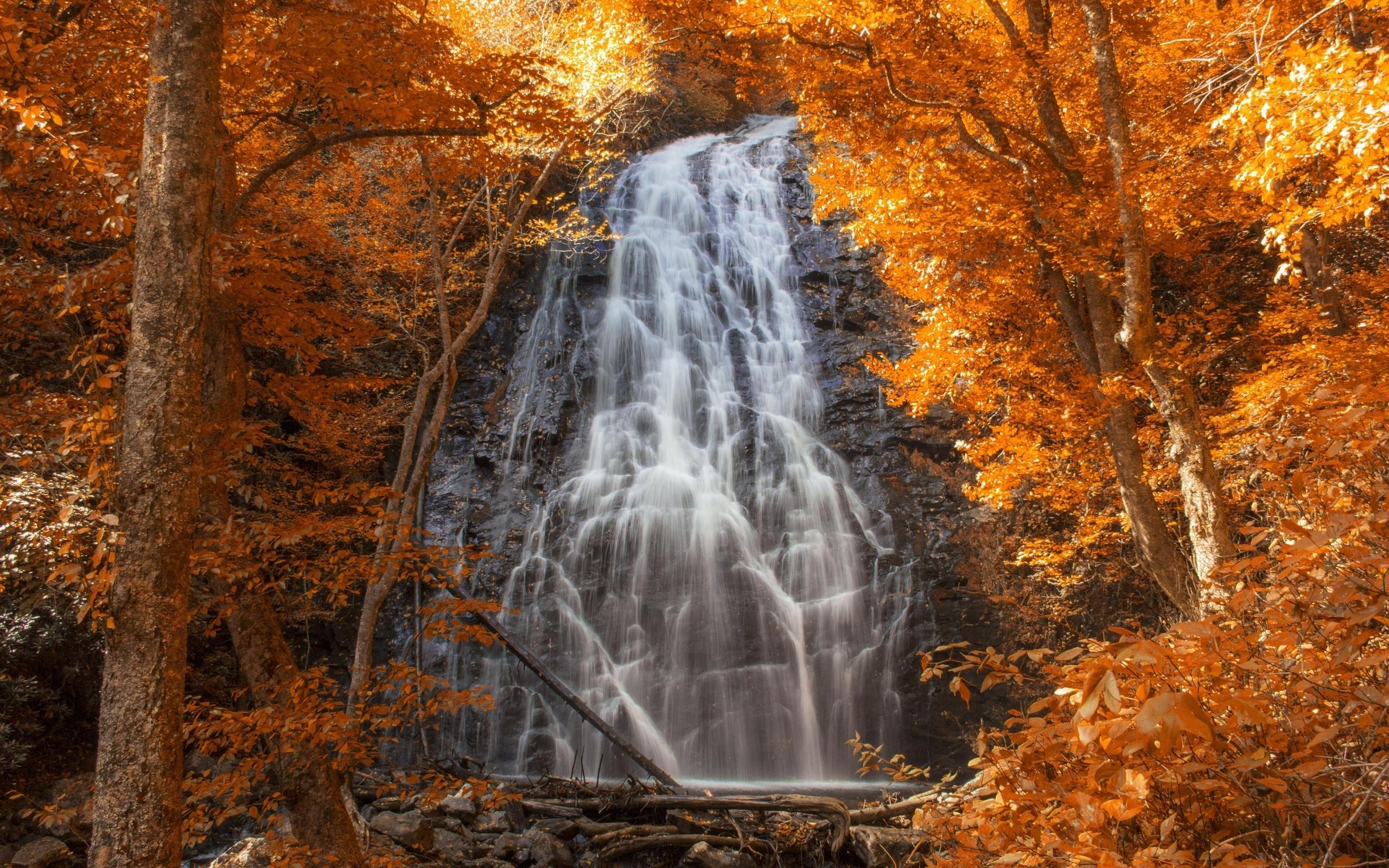 картинки осень водопад
