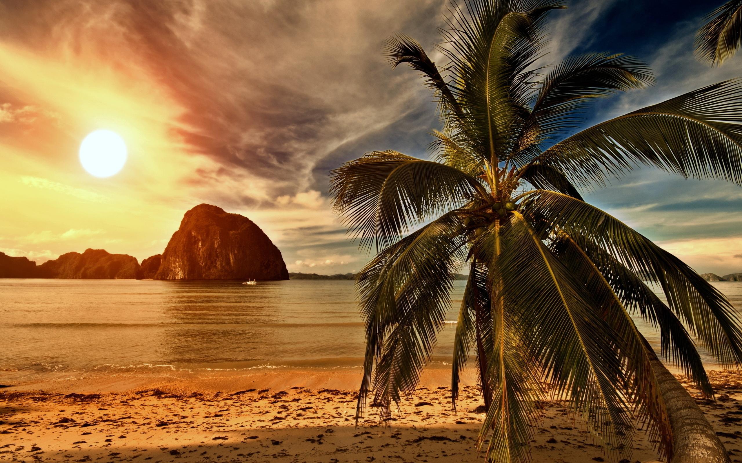 картинки фотообои пляжа