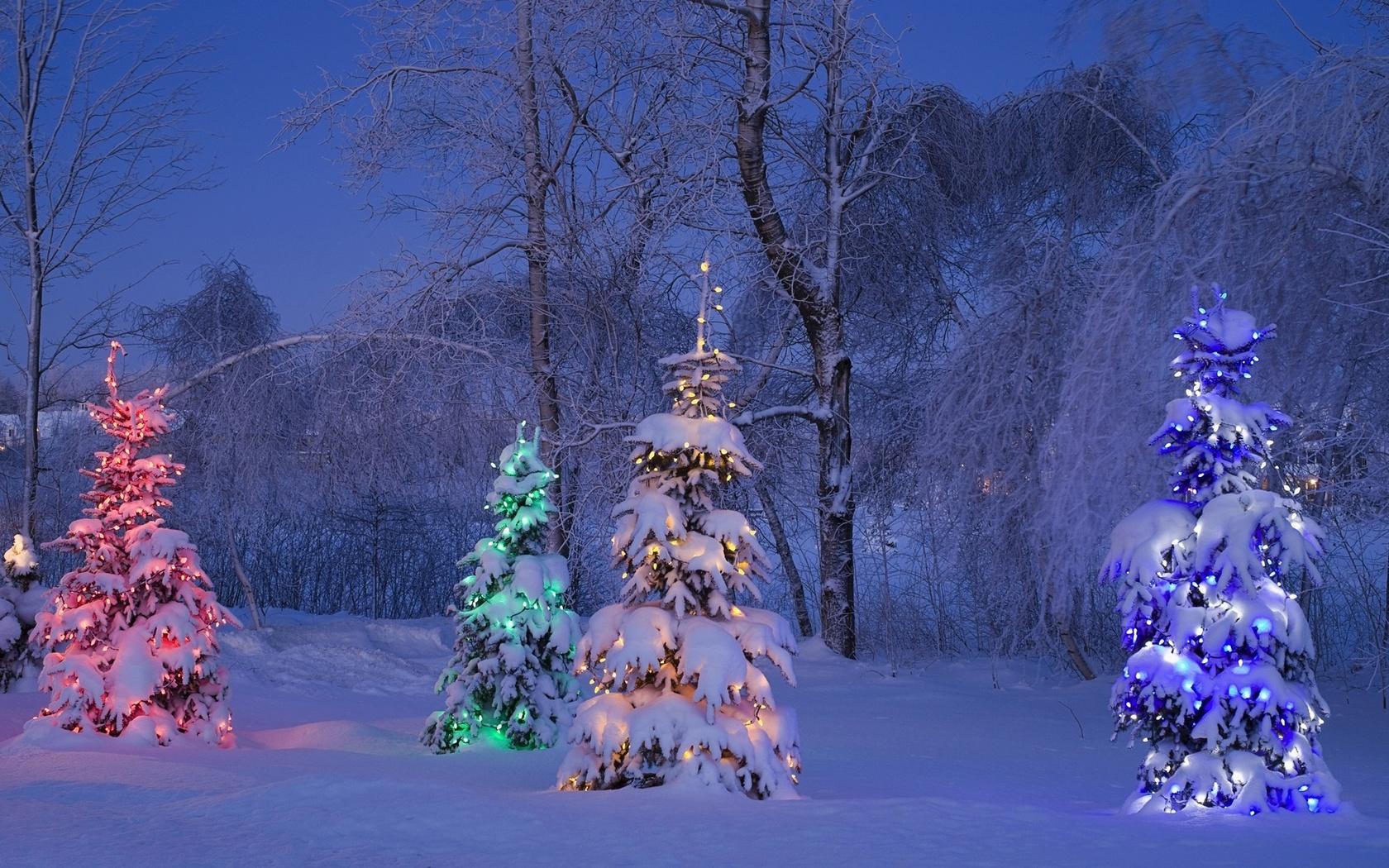 картинки зима природа новый год люблю делать красивые