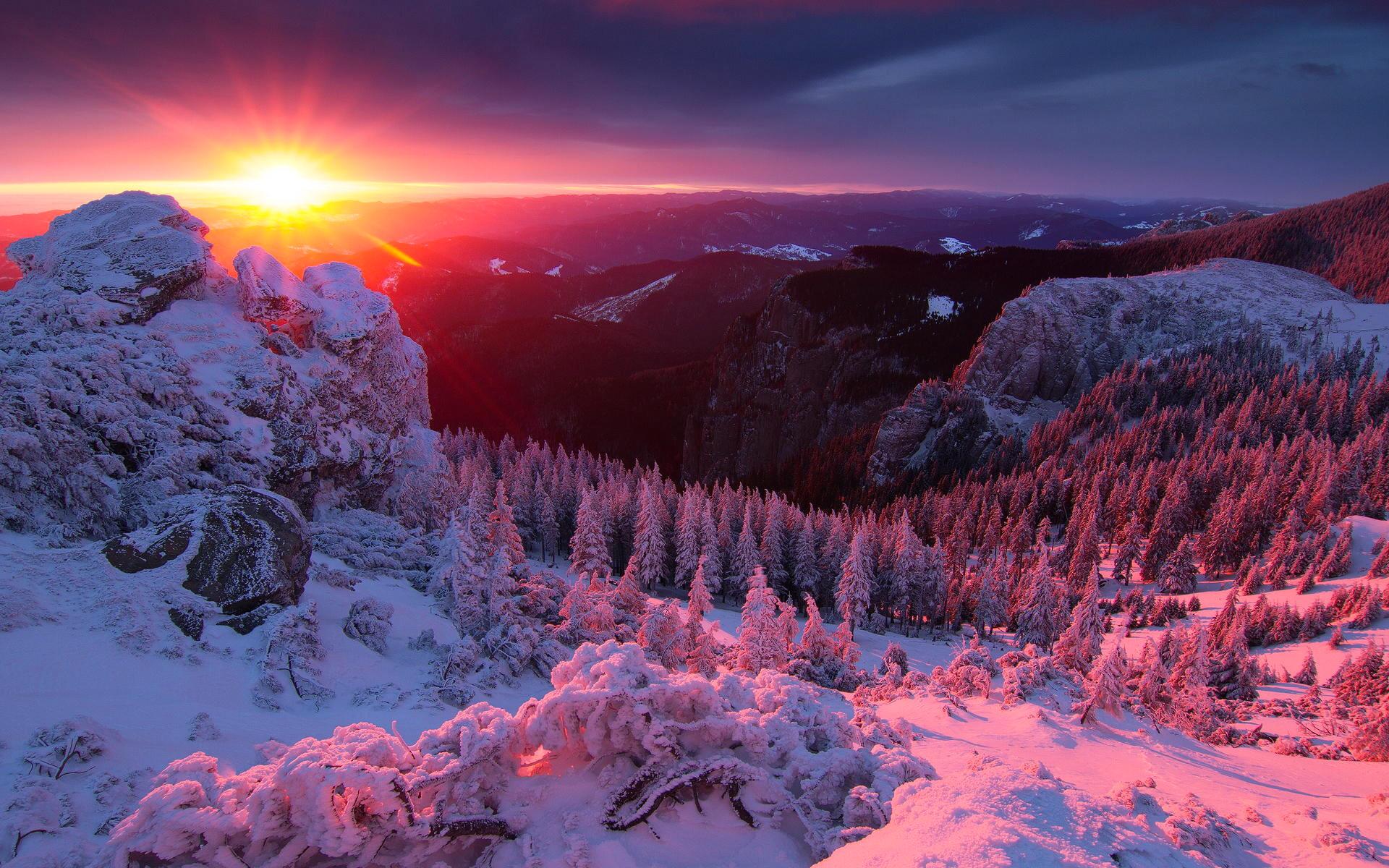 Нарисовать рисунок карандашом зиму и елку и снег утро добро