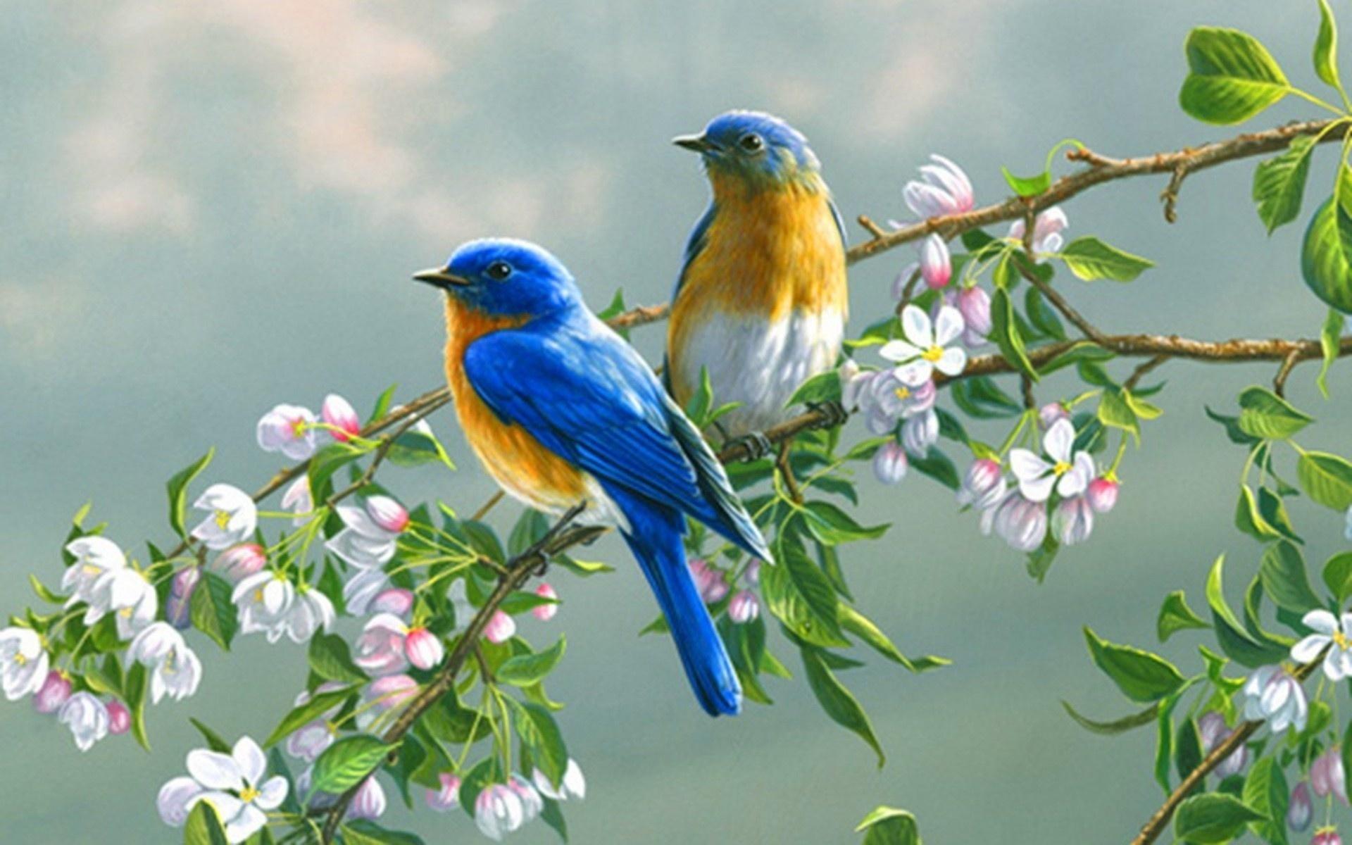 прежде всего красивые картинки с весной для телефона найти