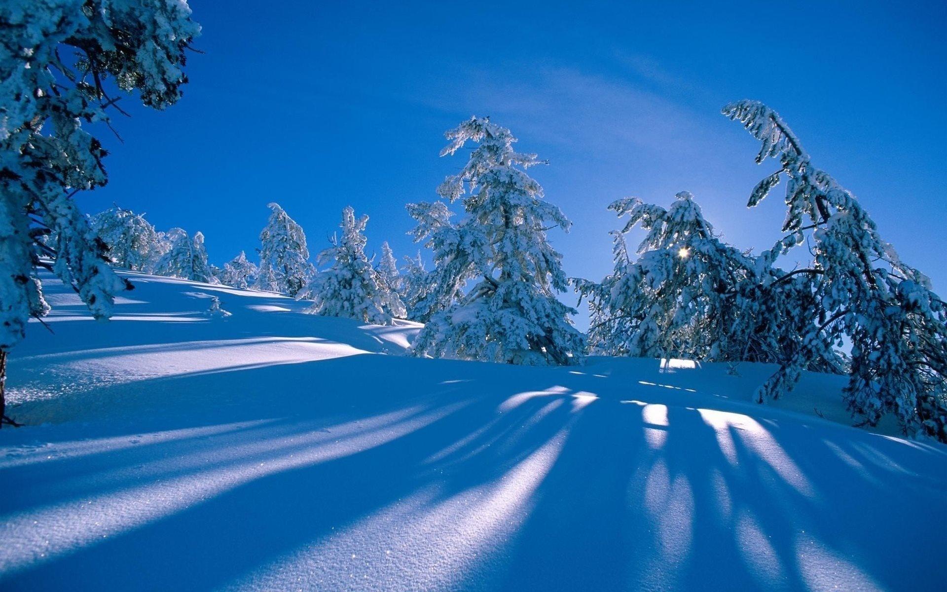 картинки зима для компа сразу удастся
