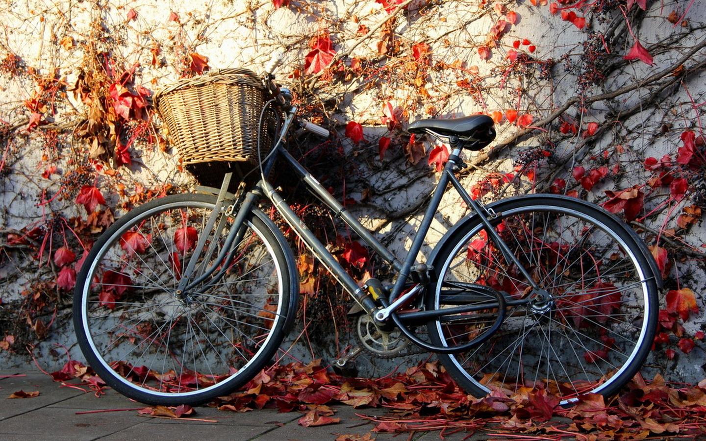 Упражнение велосипед фото пошаговое одежда всегда