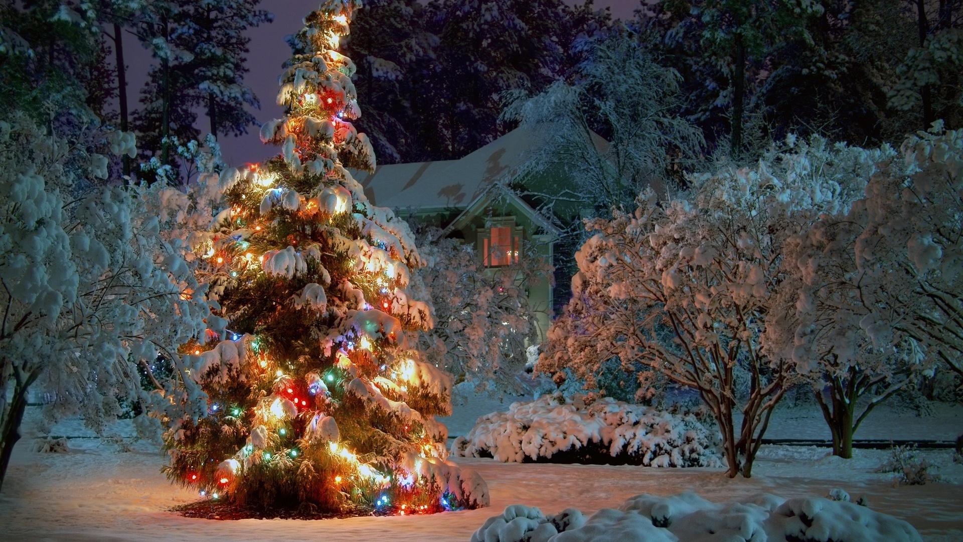 Самые красивые картинки зима новый год