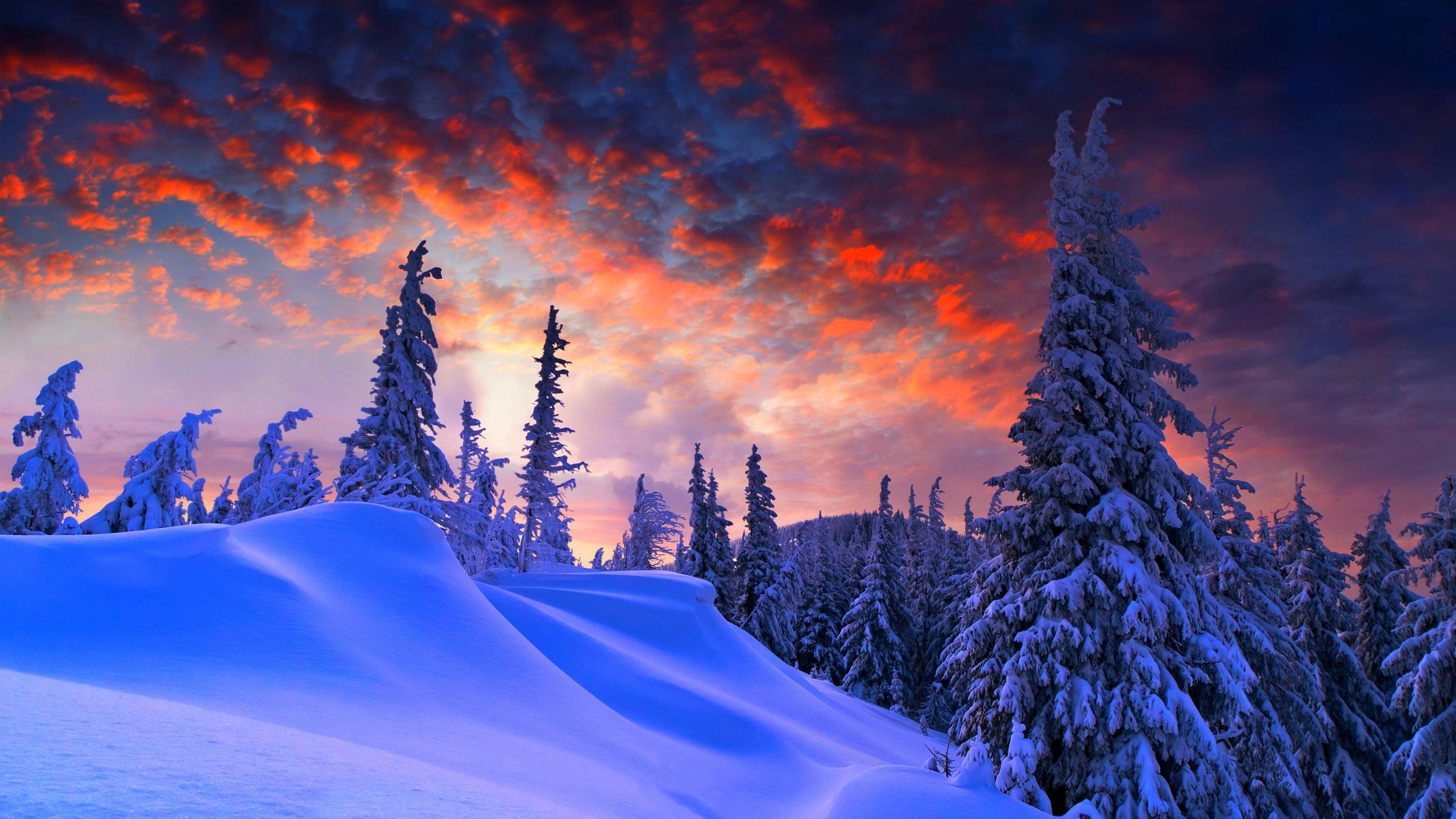 его пейзаж картинки природа зима город