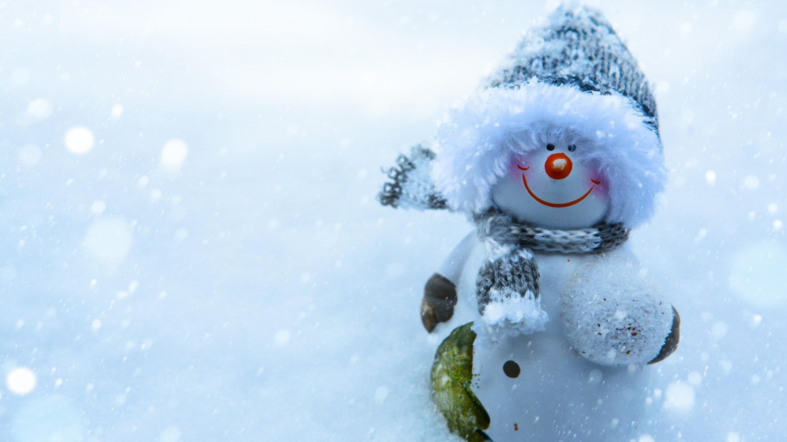 жизнь прекрасна прикольные картинки зимние