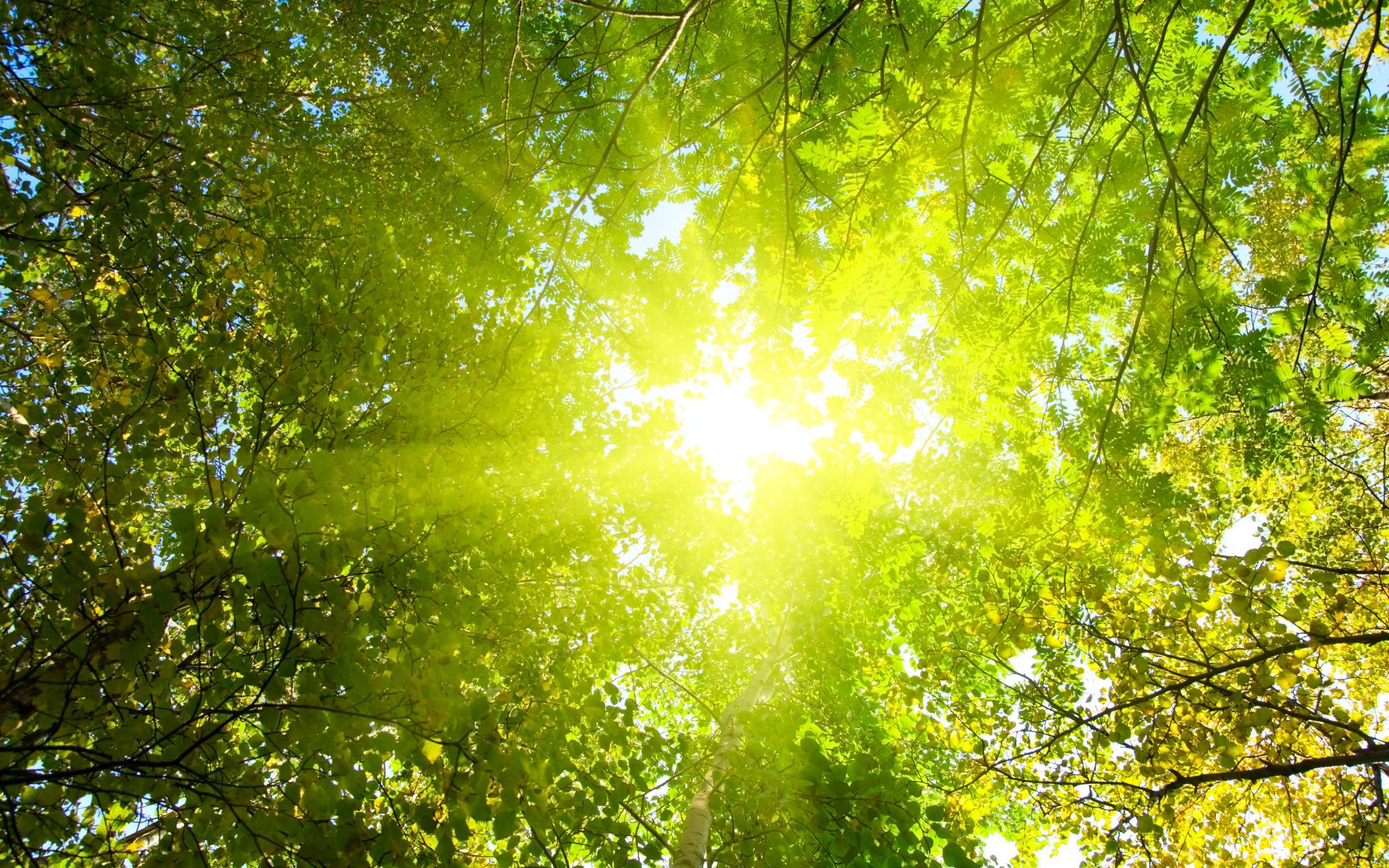 Картинки супер солнце