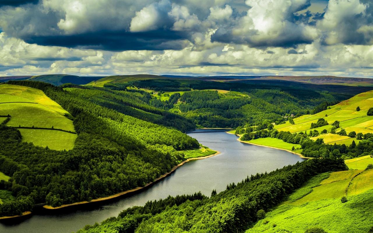 картинка поле лес и речка вдруг