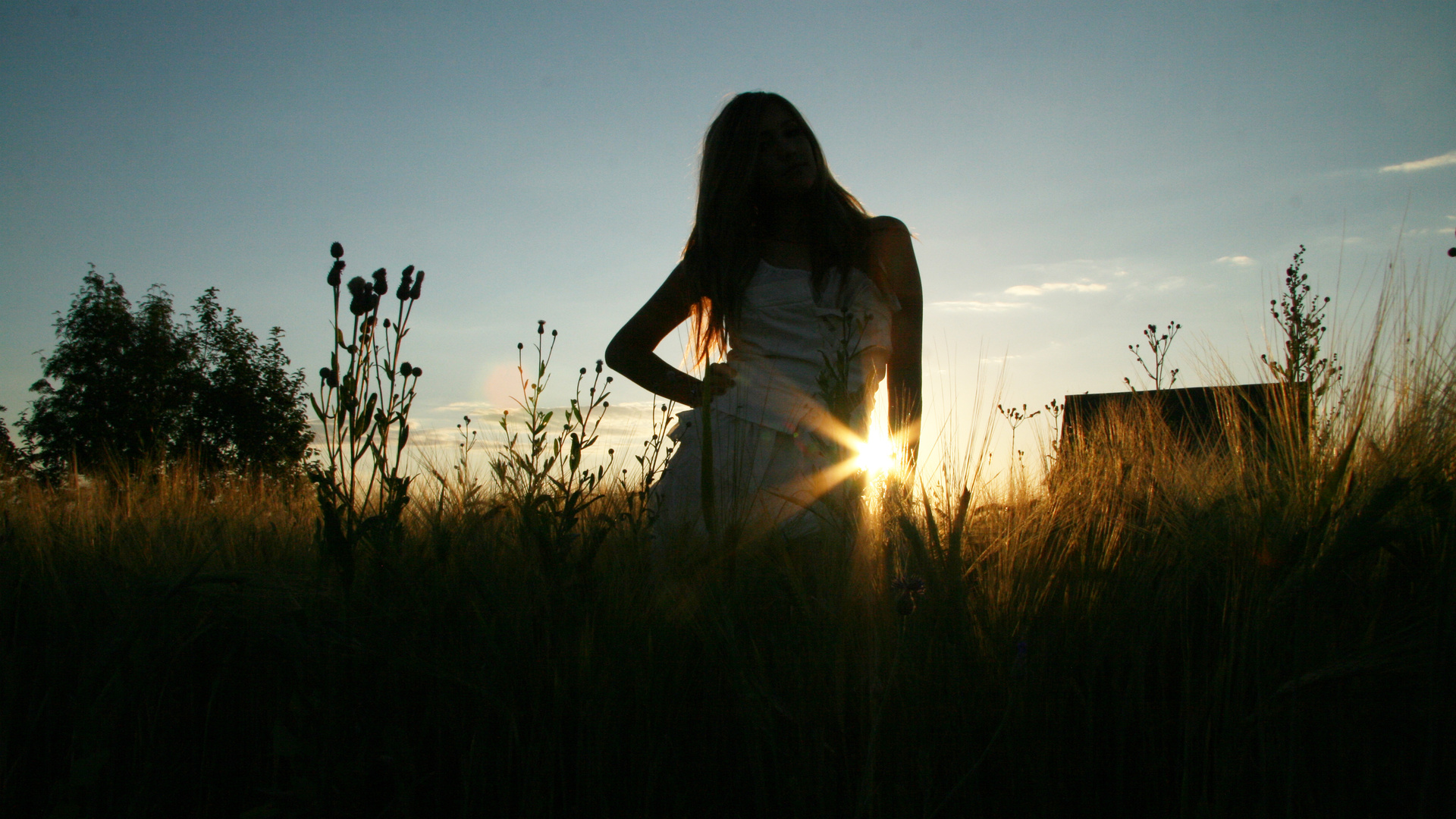 Картинки девушки в поле на аву