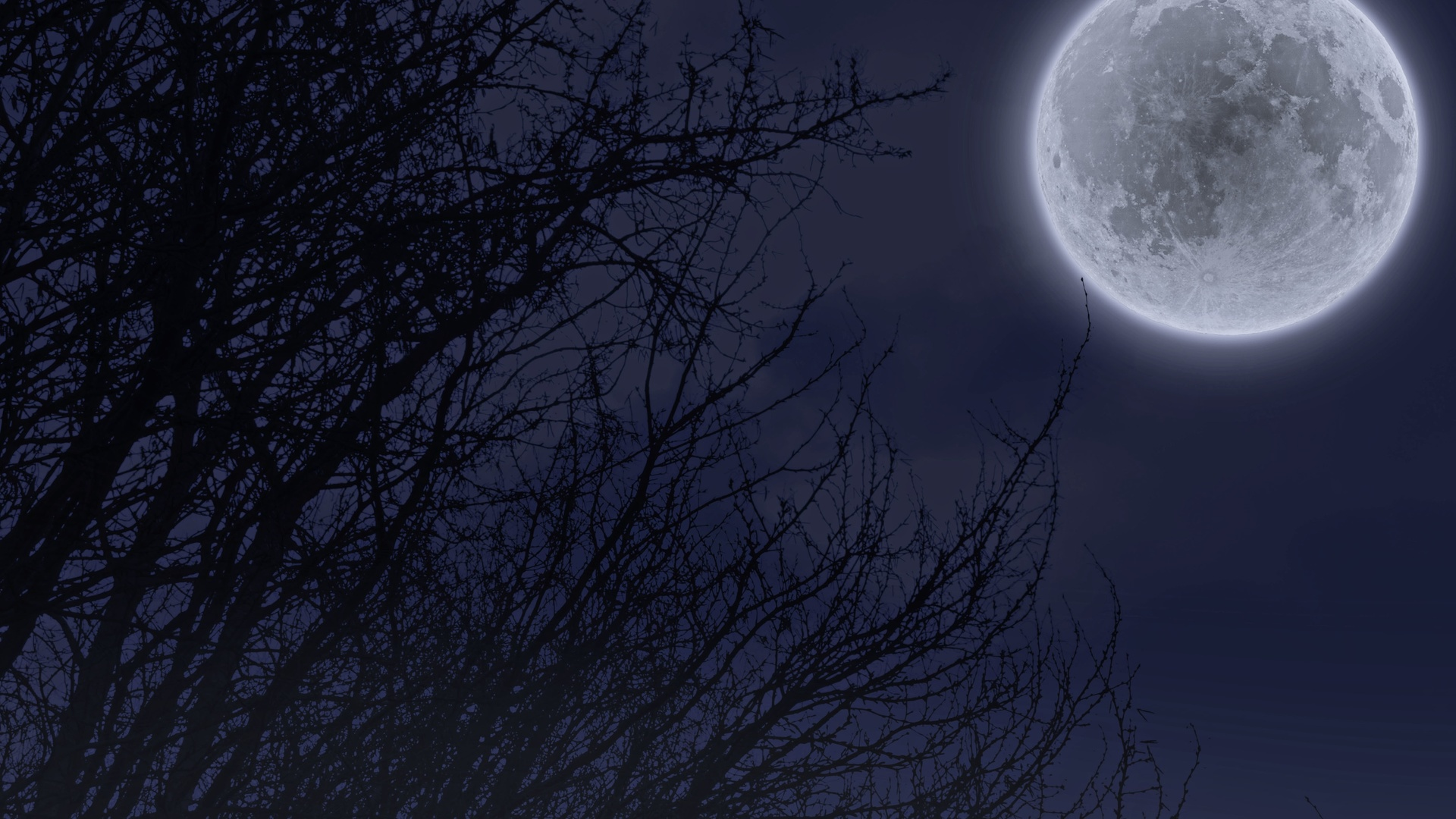 переносить картинки ночь полнолуние вашему