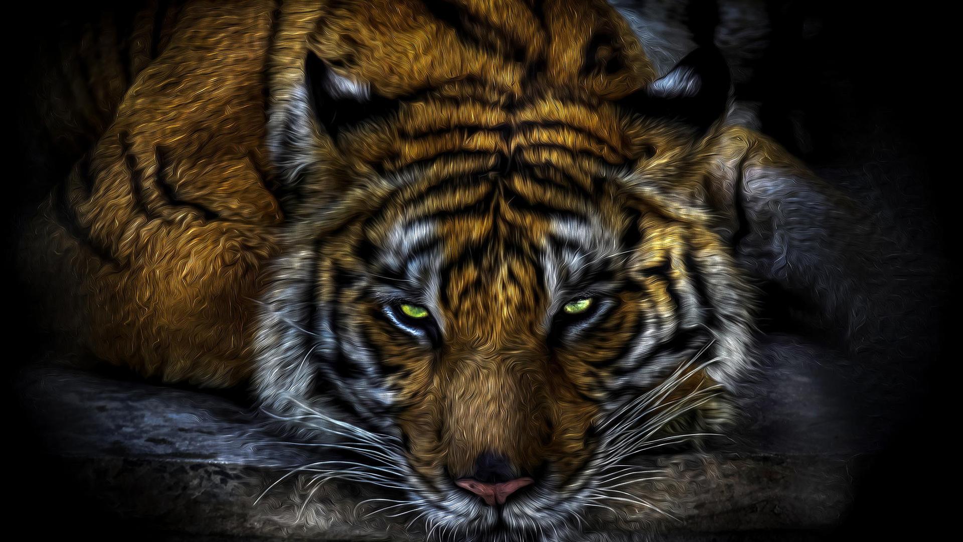 Картинки зверей хищников на заставку