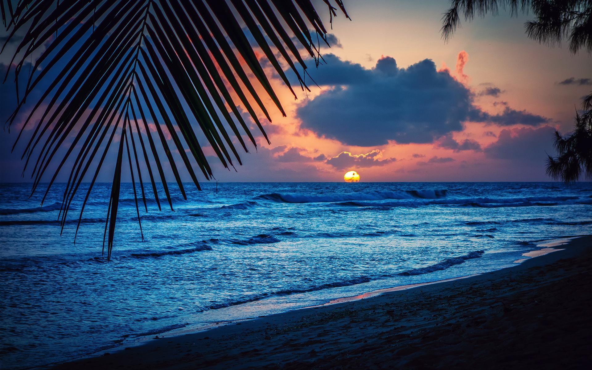 нужно картинки море пляж ночь россии