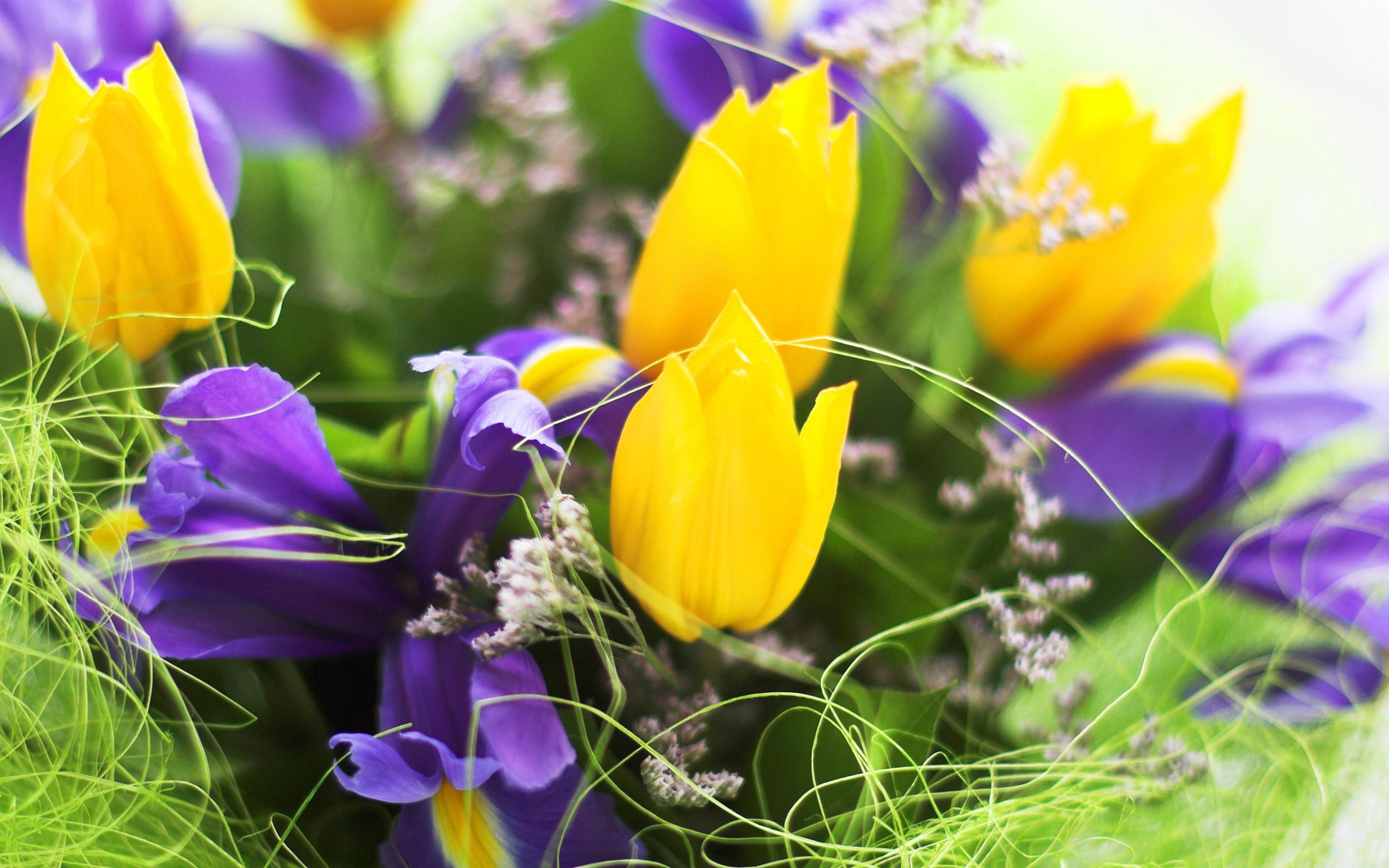 Днем, весенние цветы открытках
