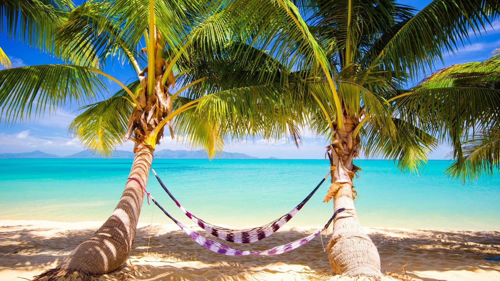 может отпуск в раю картинка сантехнике-онлайн можно приобрести
