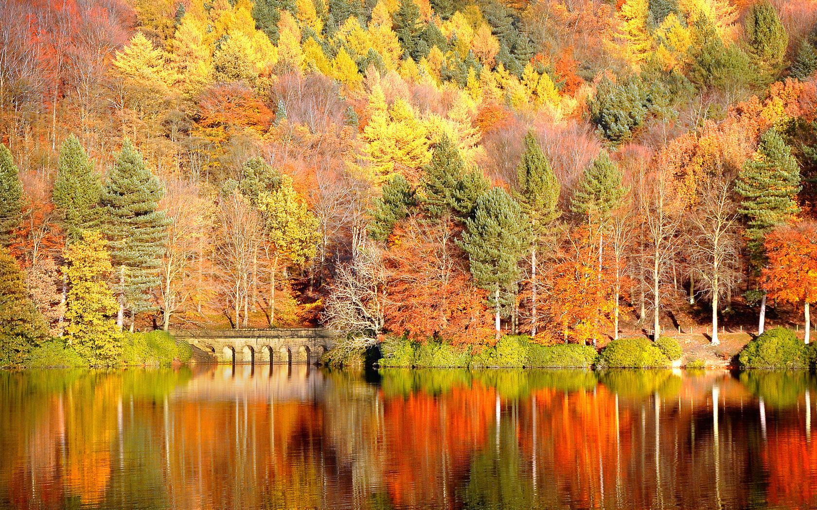 пейзажи в картинках про осень вашему