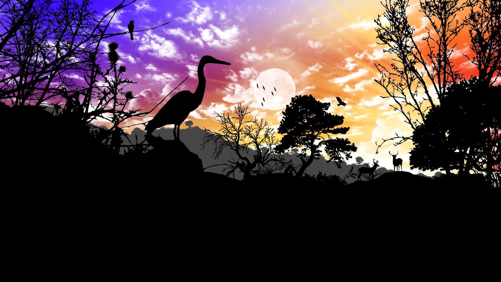 Силуэт и природа картинки