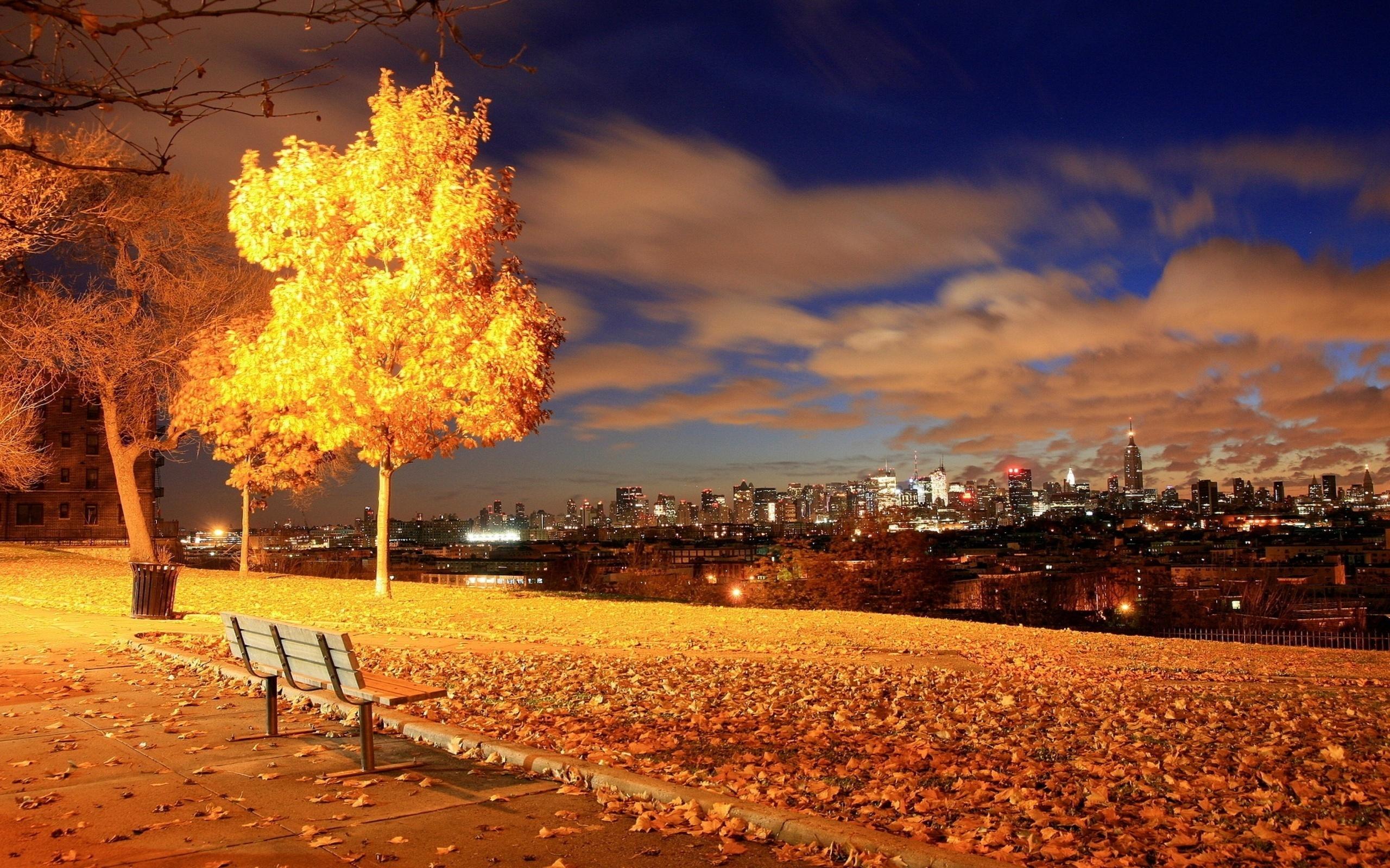 картинки золотая осень красивые необычные