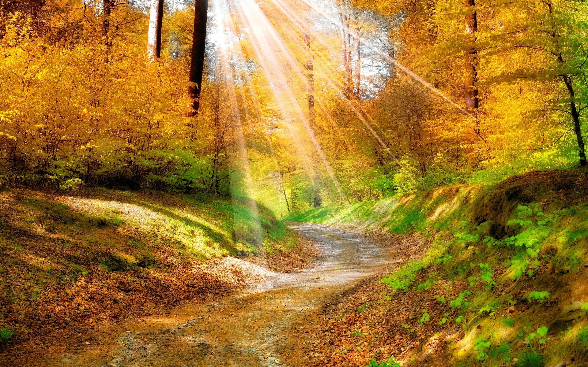 Осенние пейзажи картинки красивые, летию краснодарского края