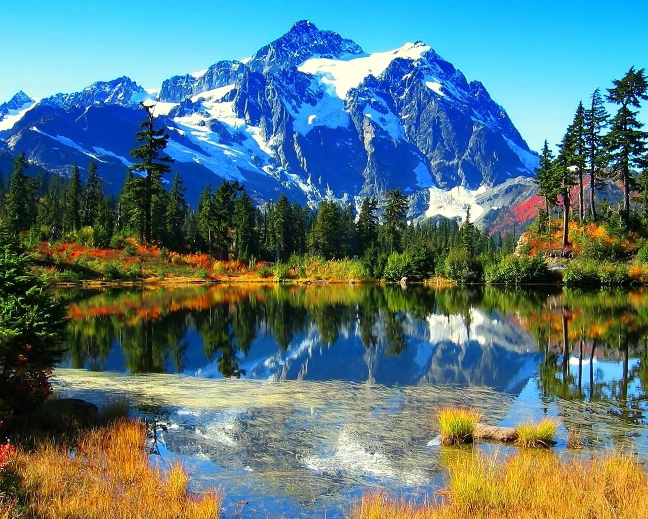 Смотреть красивые картинки про природу