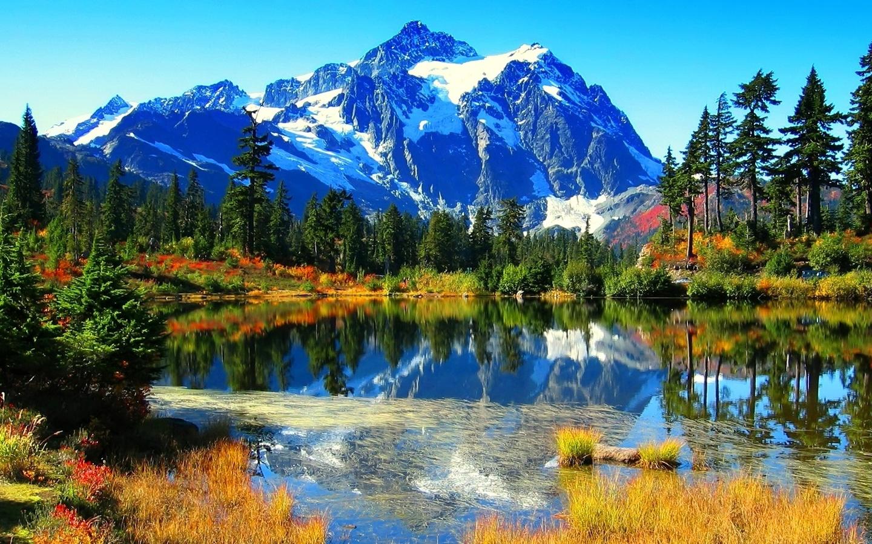 Картинка красивые природы