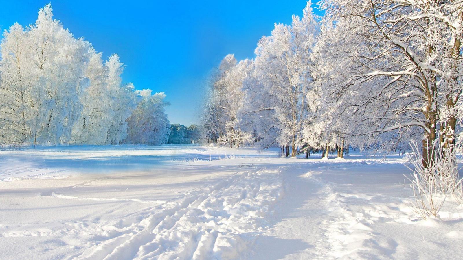 Картинки зимы красивые