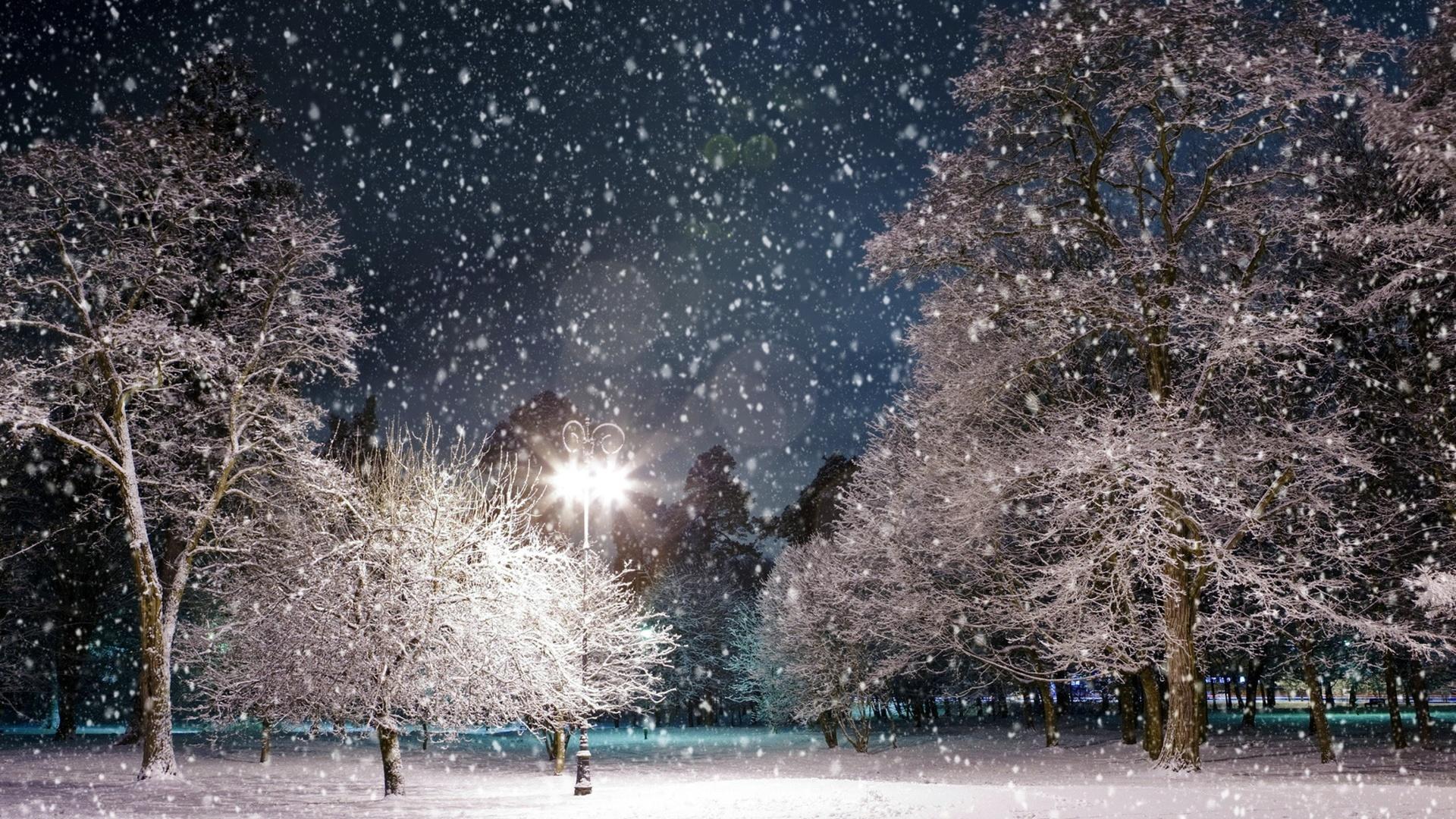 извилистая картинки снежная погода приехали этом