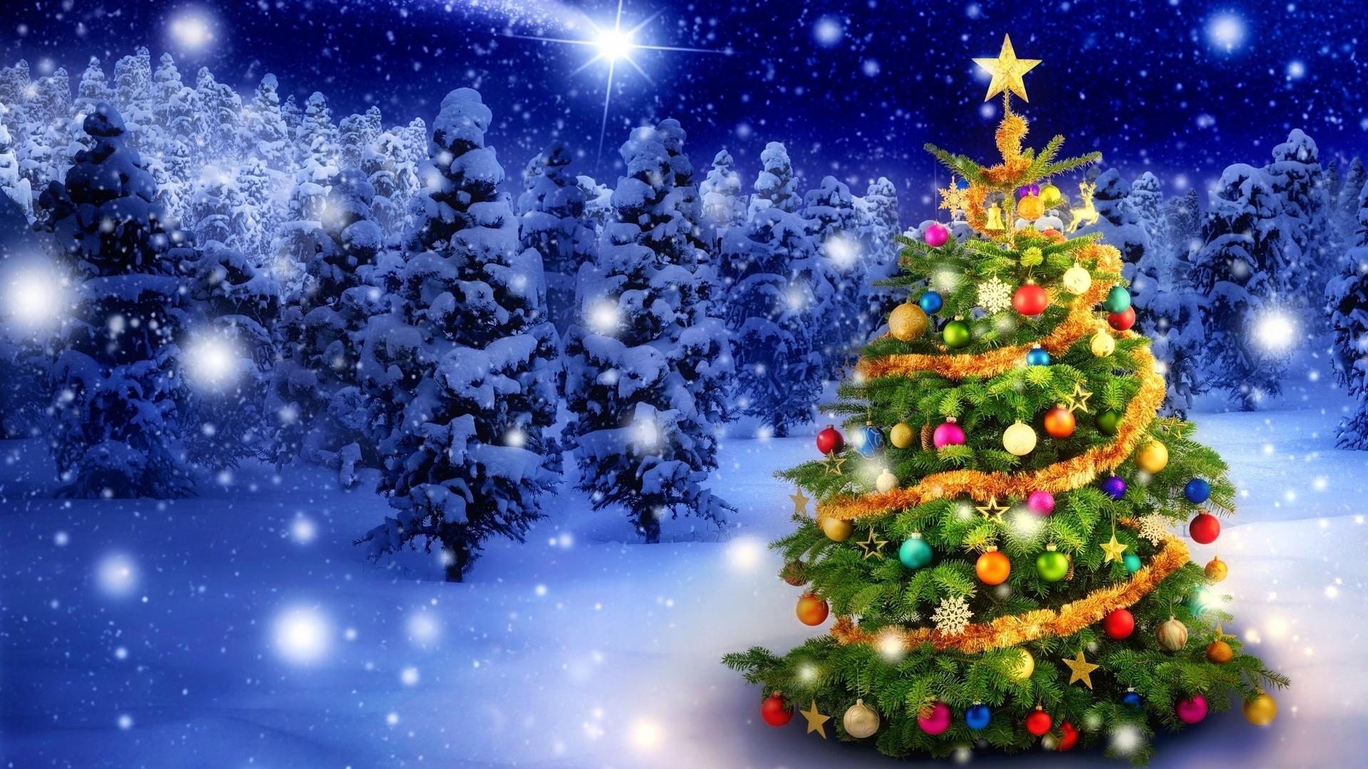 новогодний лес поздравления солнце