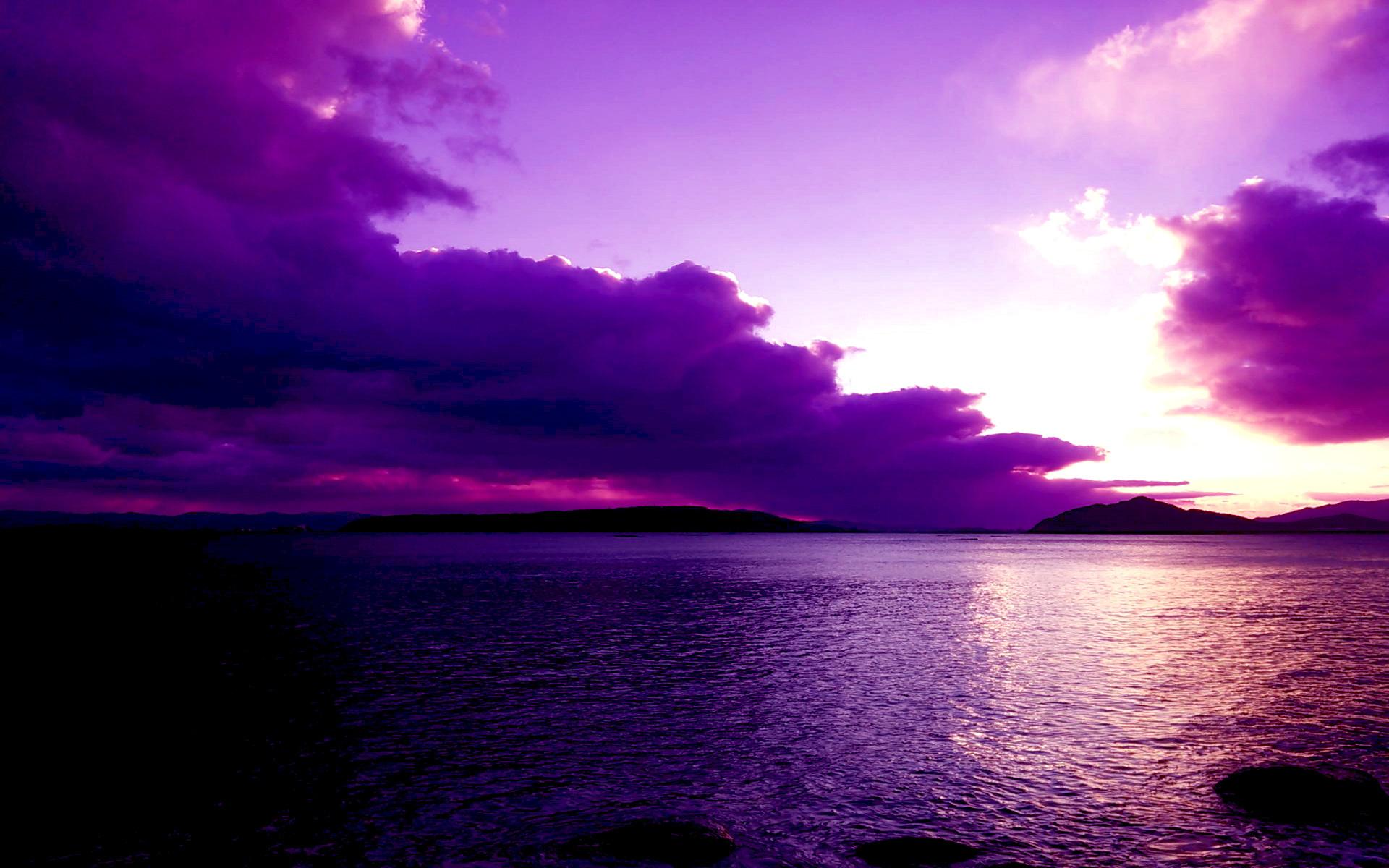 Картинки красивые фиолетовые