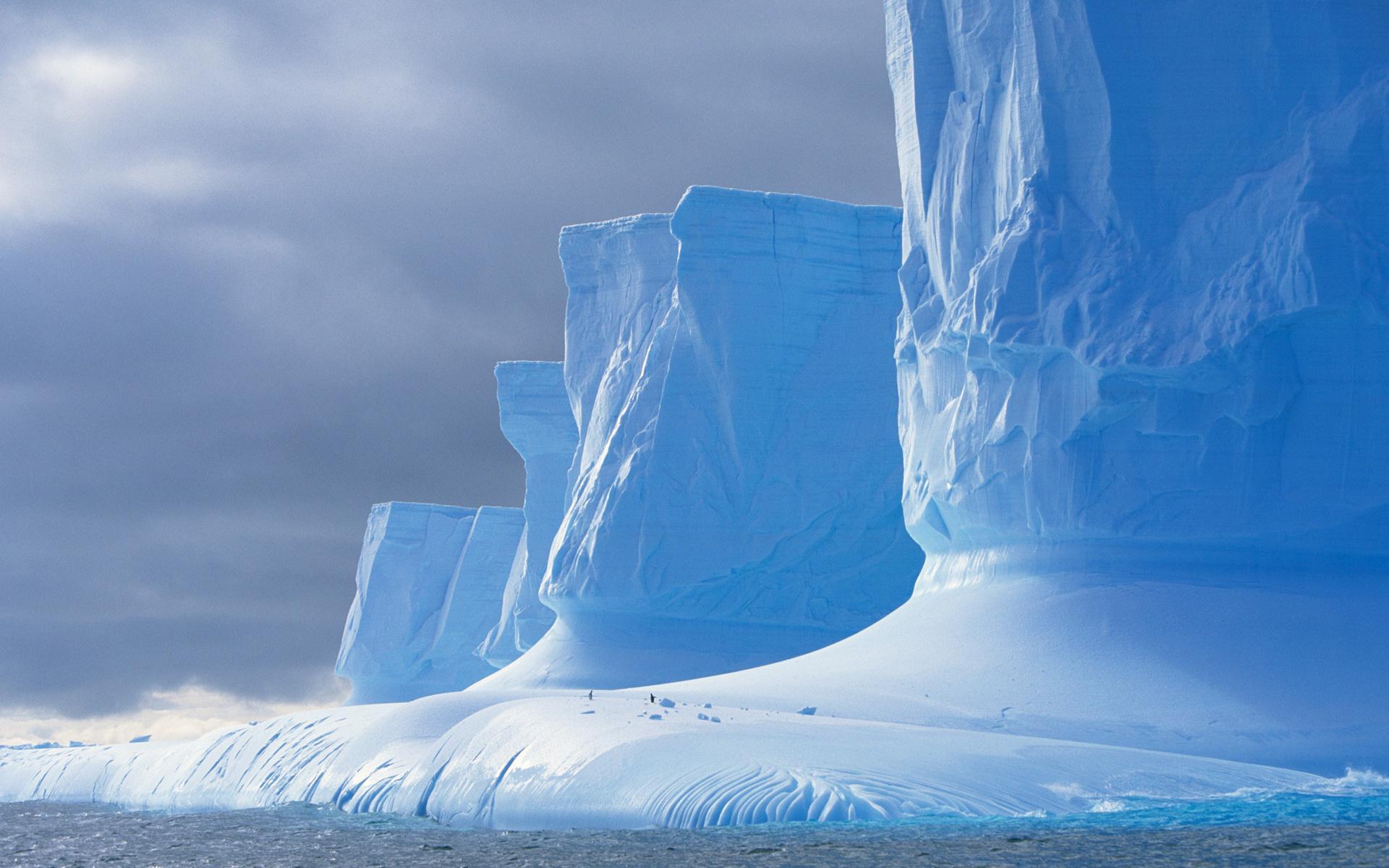 даже южный полюс зимние фотографии посчитать