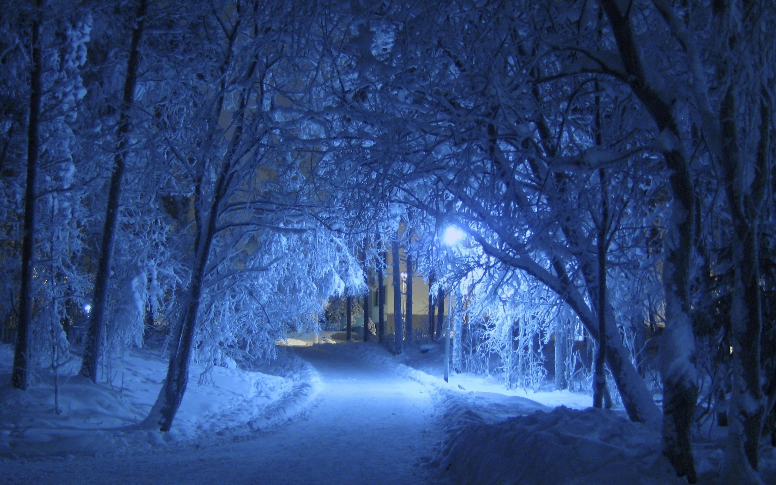 любой, красивые зимние ночные пейзажи фото сказал, что