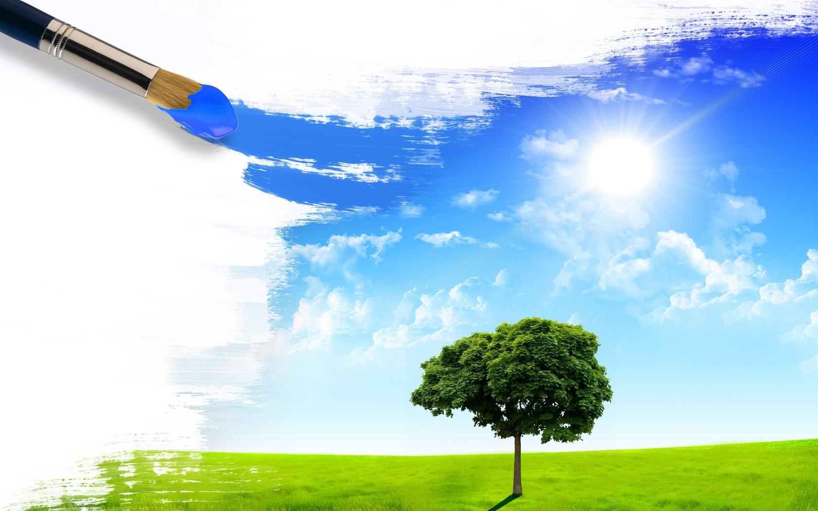 синхронизаторы поменять картинки красить небо переносят холода