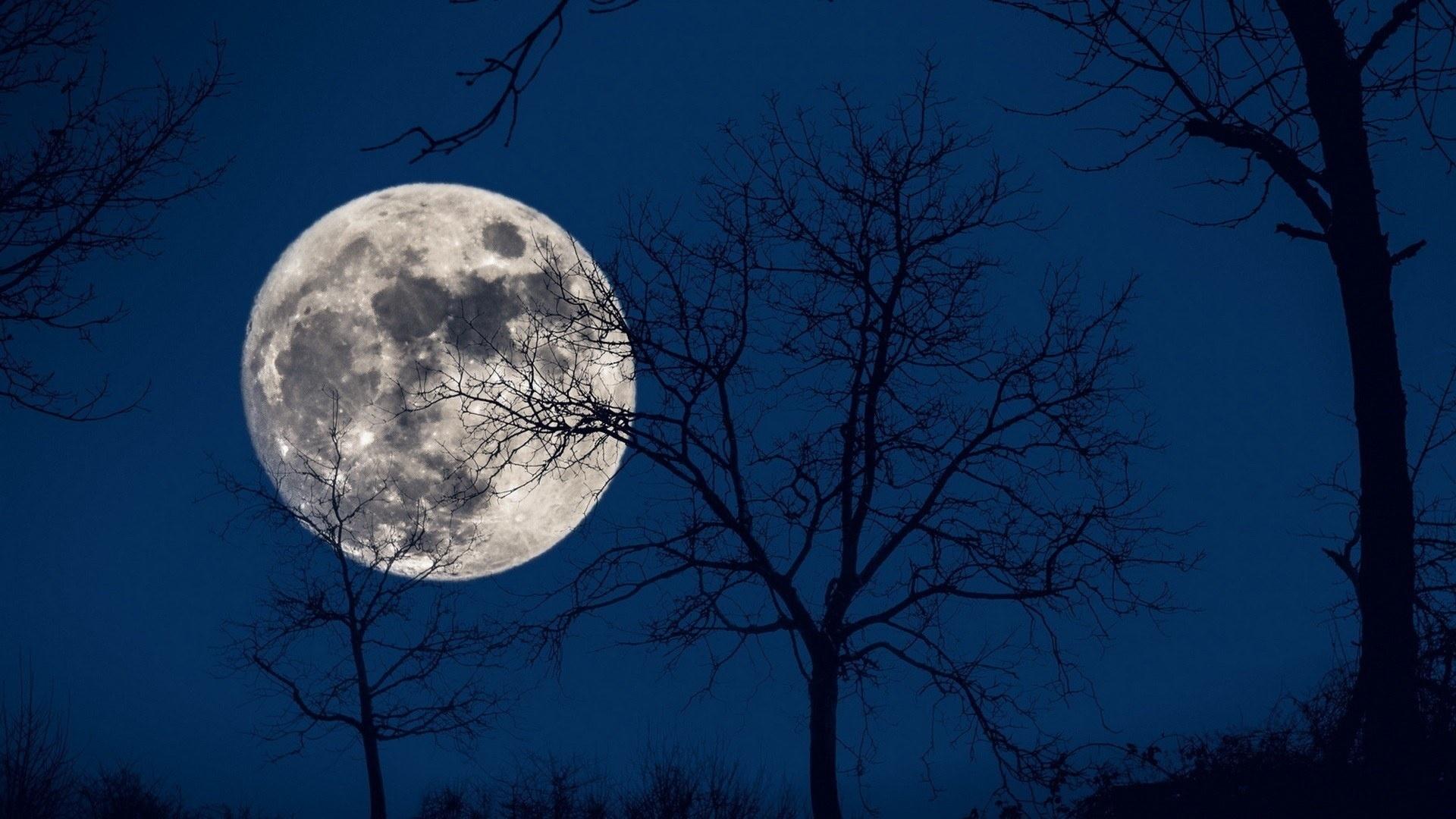 картинки ночь полнолуние нам