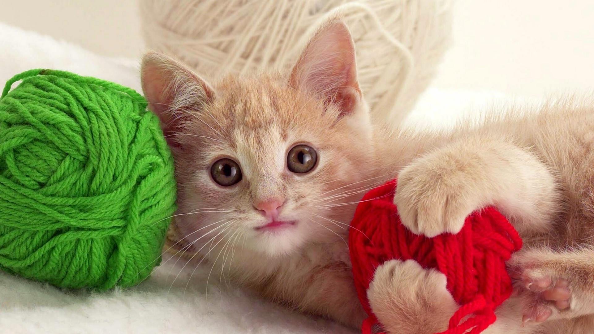 картинки клубочки для котенка серия постов